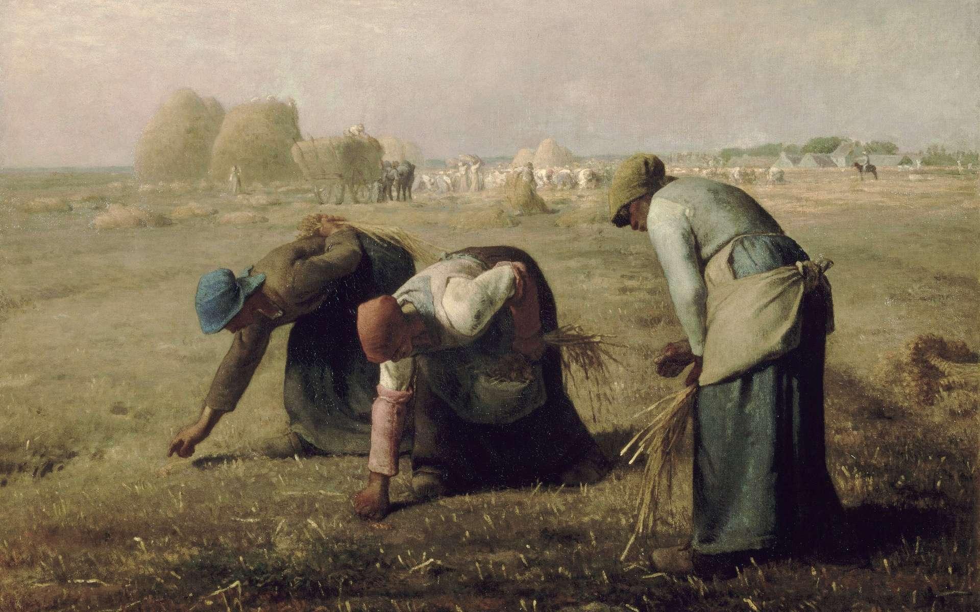 Tableau « Les glaneuses » de Jean-François Millet, 1857. Musée d'Orsay, Paris. © Wikimedia Commons, domaine public