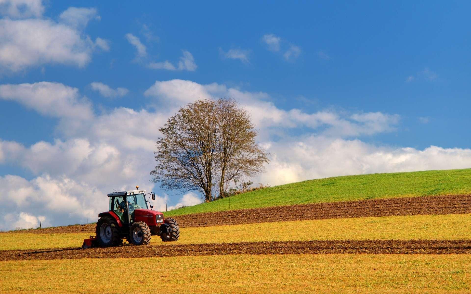 La plateforme Agriconomie s'est imposée comme la première place de marché auprès des agriculteurs. © Olympixel, Adobe Stock