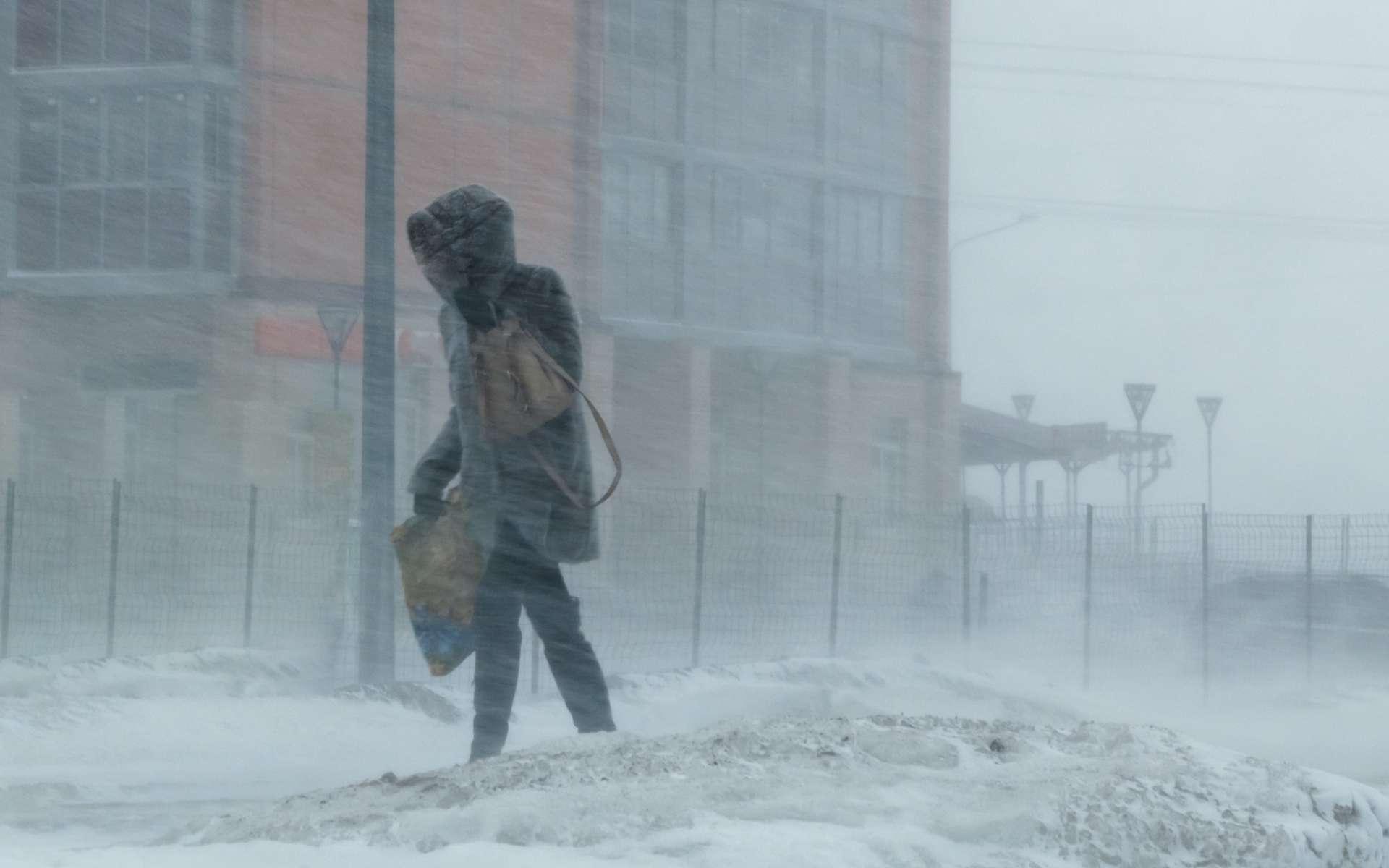 Le blizzard renforce l'impression de froid. © justoomm, Adobe Stock