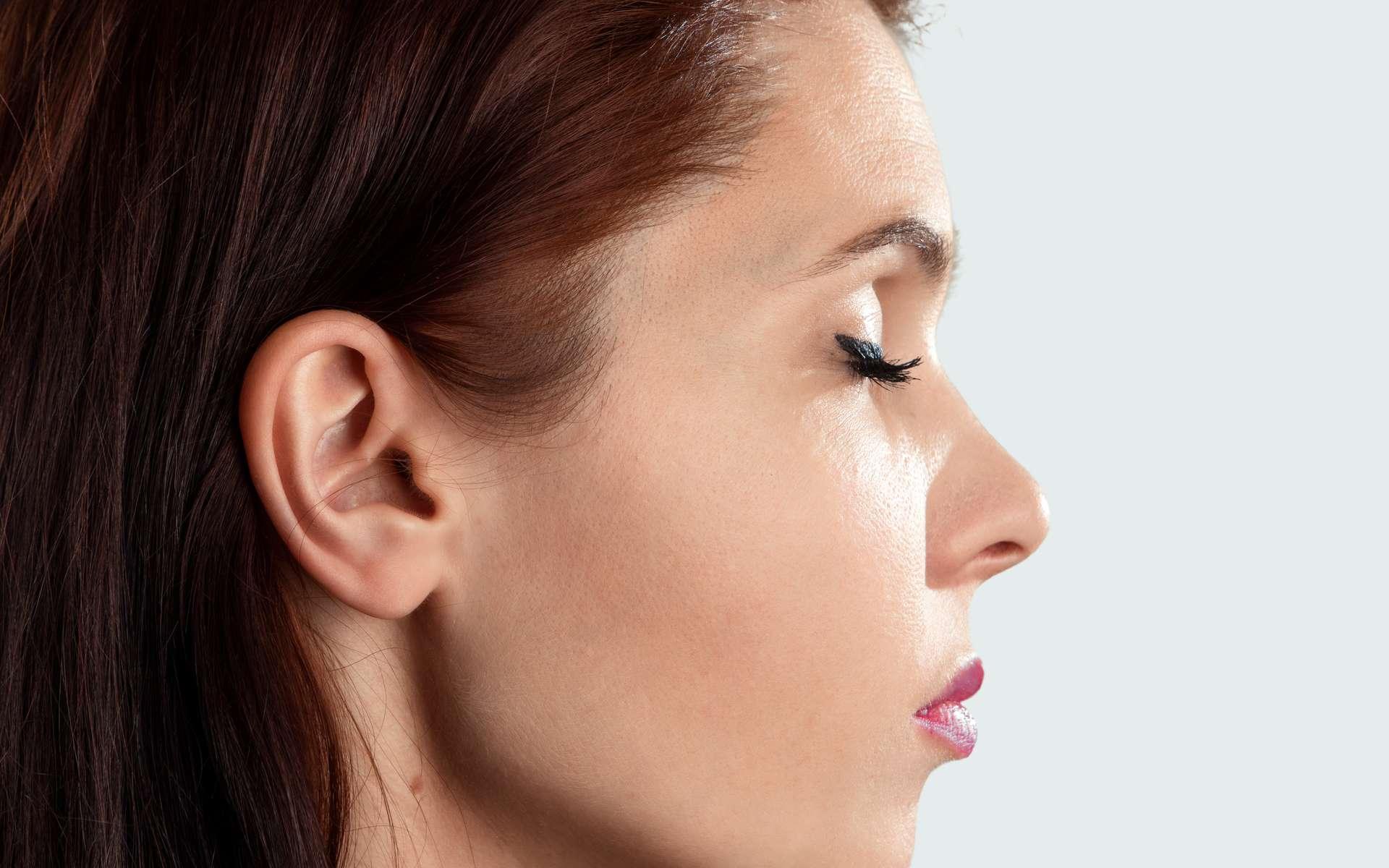 Quel lien entre le déplacement des cristaux de l'oreille interne et les vertiges ? © Aliaksandr Marko, Adobe Stock