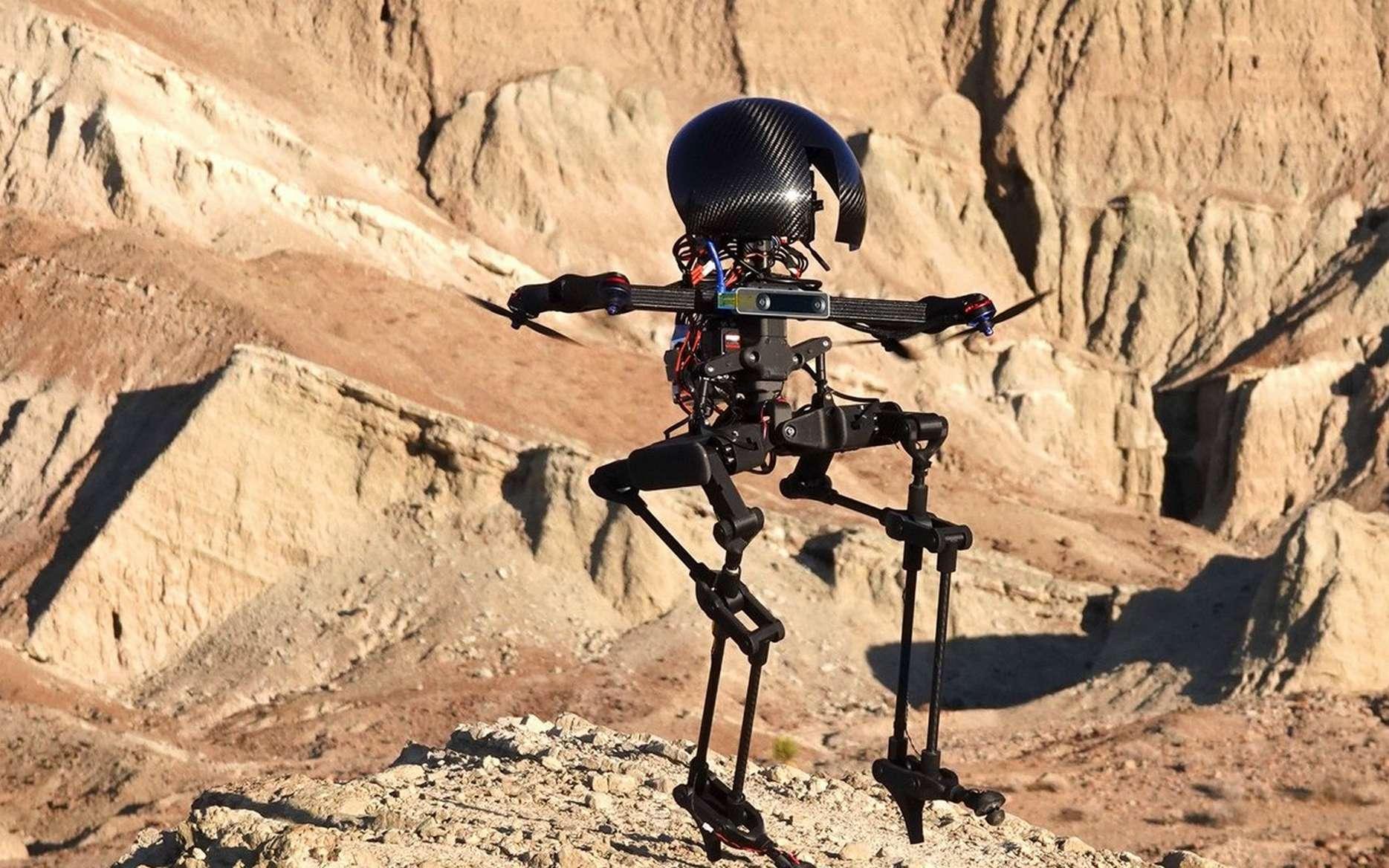 Le robot Leonardo du Caltech. © California Institute of Technology