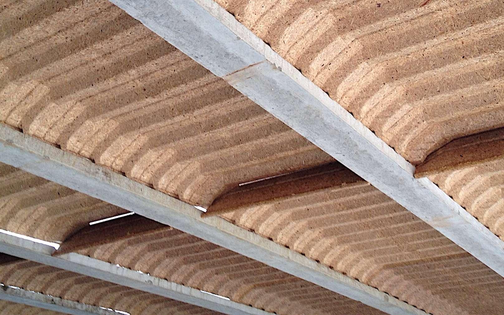 Hourdis creux en bois aggloméré, associés à des poutrelles en béton précontraint © Isoltop