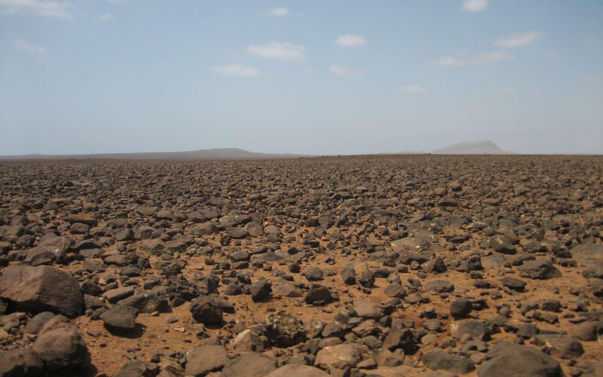 Le terme « hamada » est dérivé de l'arabe ḥammāda, qui signifie « grand plateau rocailleux et stérile ». © Ingo Wölbern, Wikimedia Commons, DP