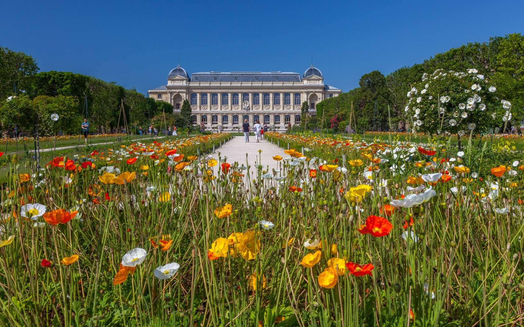 D'une superficie de 23,5 hectares, le jardin des plantes de Paris présente une grande variété de plantes. © Pierre Violet, fotolia