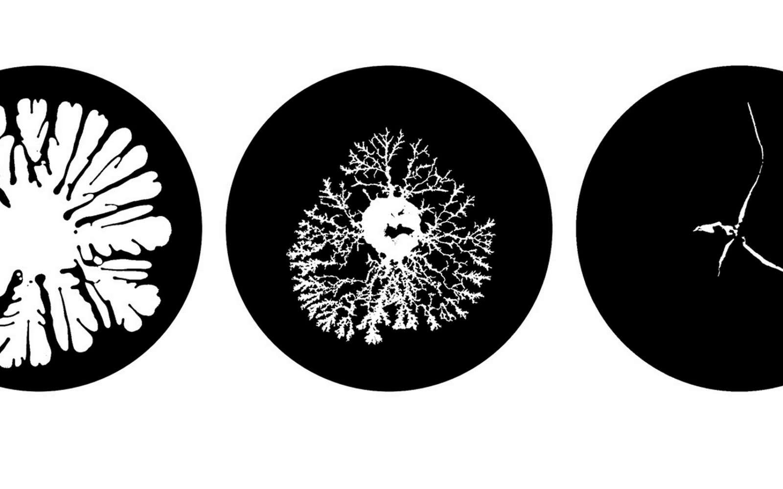 Trois comportements différents d'un fluide non-newtonien, obtenus en variant la pression de l'air injecté. © Université de Swansea