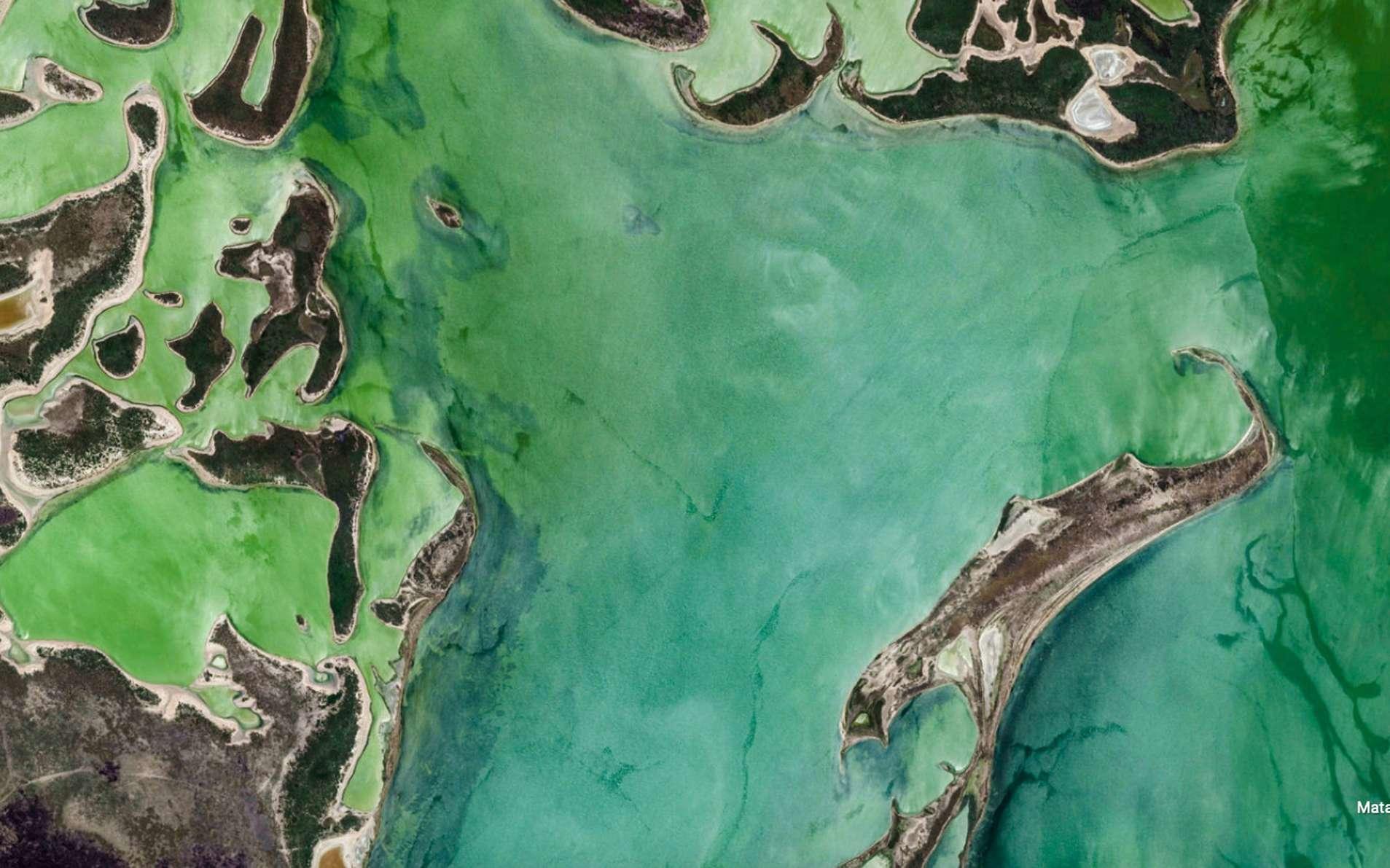 1.000 nouvelles images de la Terre : Google Earth fait sa plus grosse mise à jour depuis sa création
