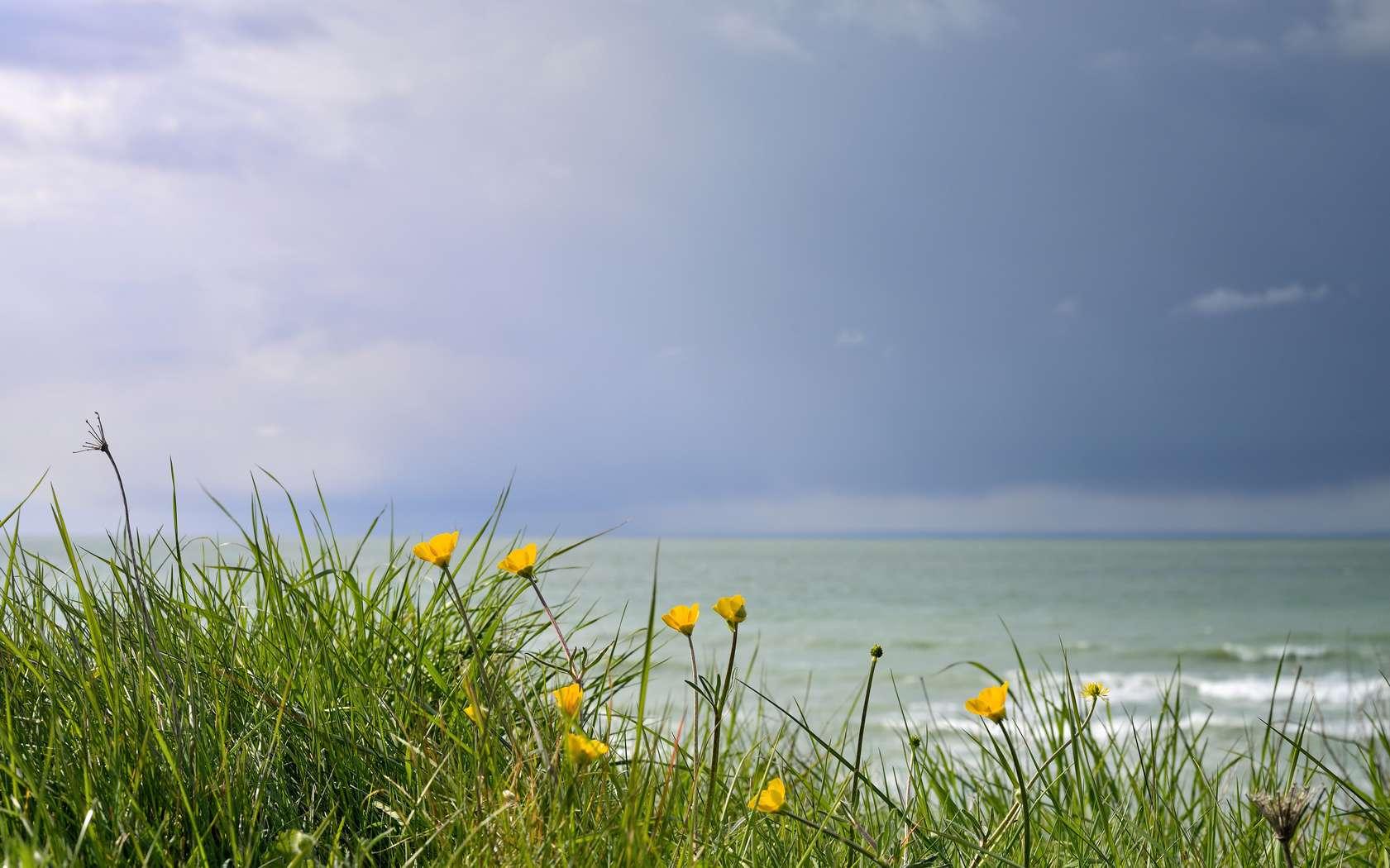 Un exemple de giboulée de mars. Les giboulées de printemps résultent d'instabilités météorologiques. © chrisberic, fotolia