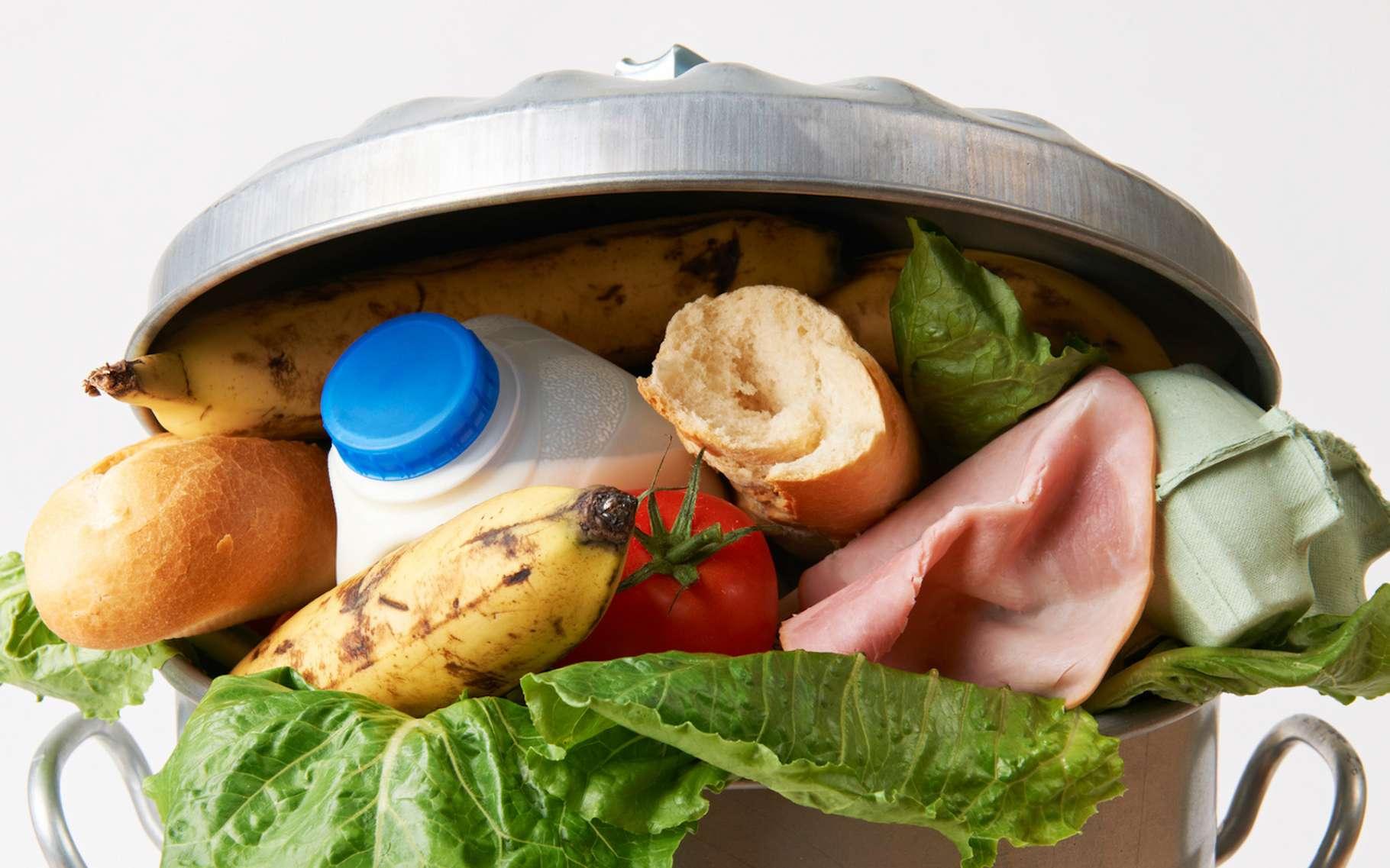 Restes de repas, fruits et légumes, produits entamés, produits non déballés, boissons, liquides alimentaires, pain. Chaque année, un Français jette à la poubelle plus de 20 kg de denrées alimentaires. © highwaystarz, Fotolia