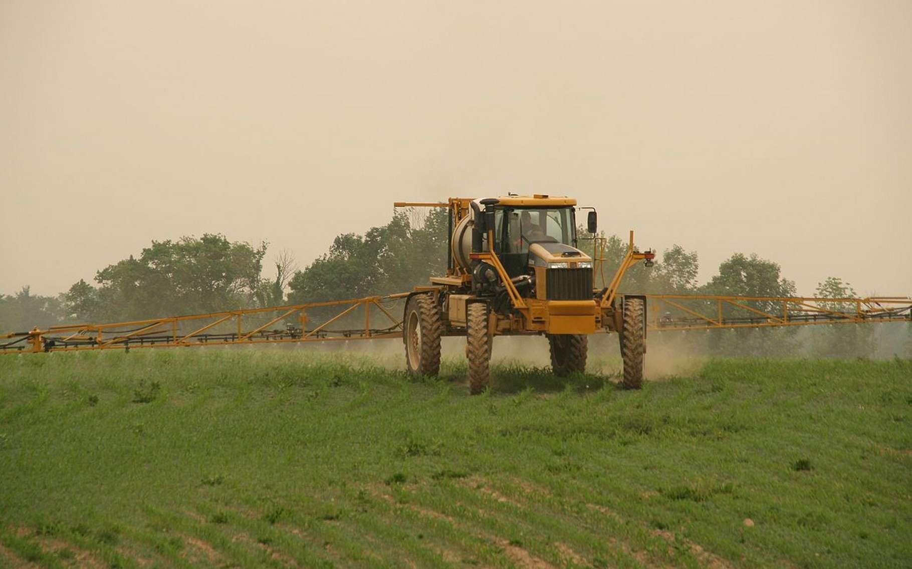 Les pesticides utilisés dans les cultures se répandent aux alentours. Les agriculteurs et les maisons avoisinantes y sont donc exposés. © Pl77, Wikimedia Commons, CC by 3.0