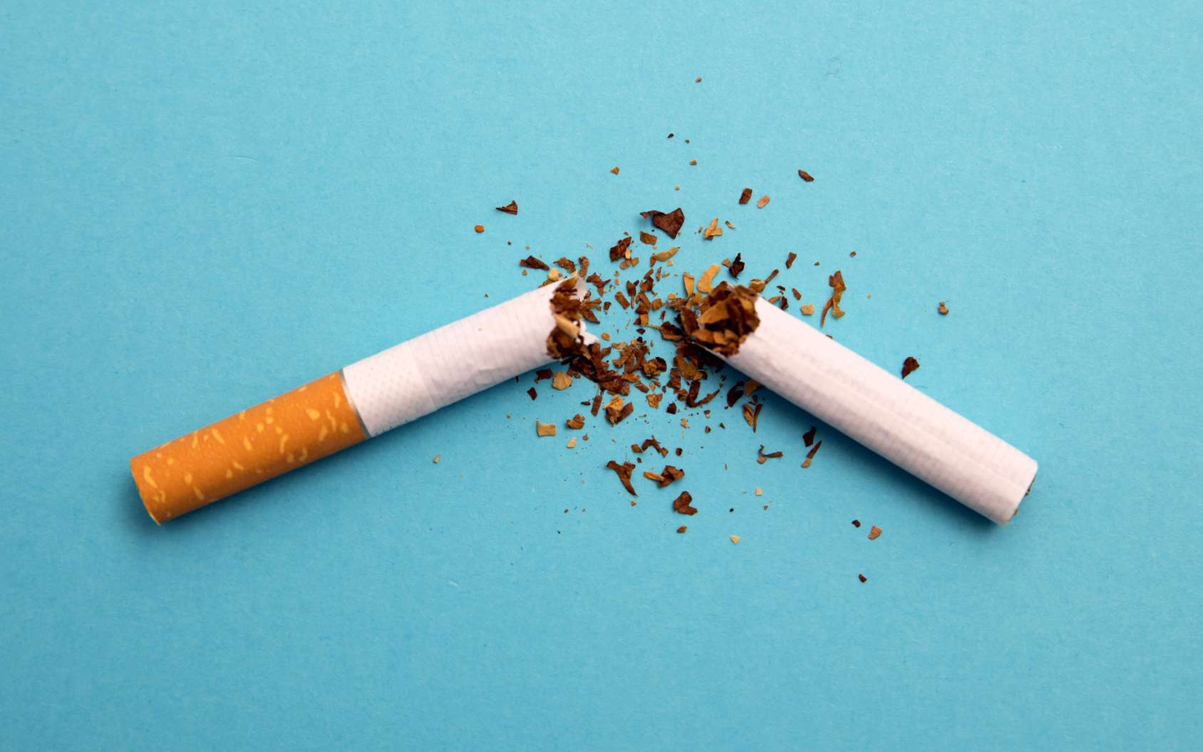 Le tabac multiplie par 10 ou 15 le risque de cancer du poumon. © ivanchik29, Fotolia