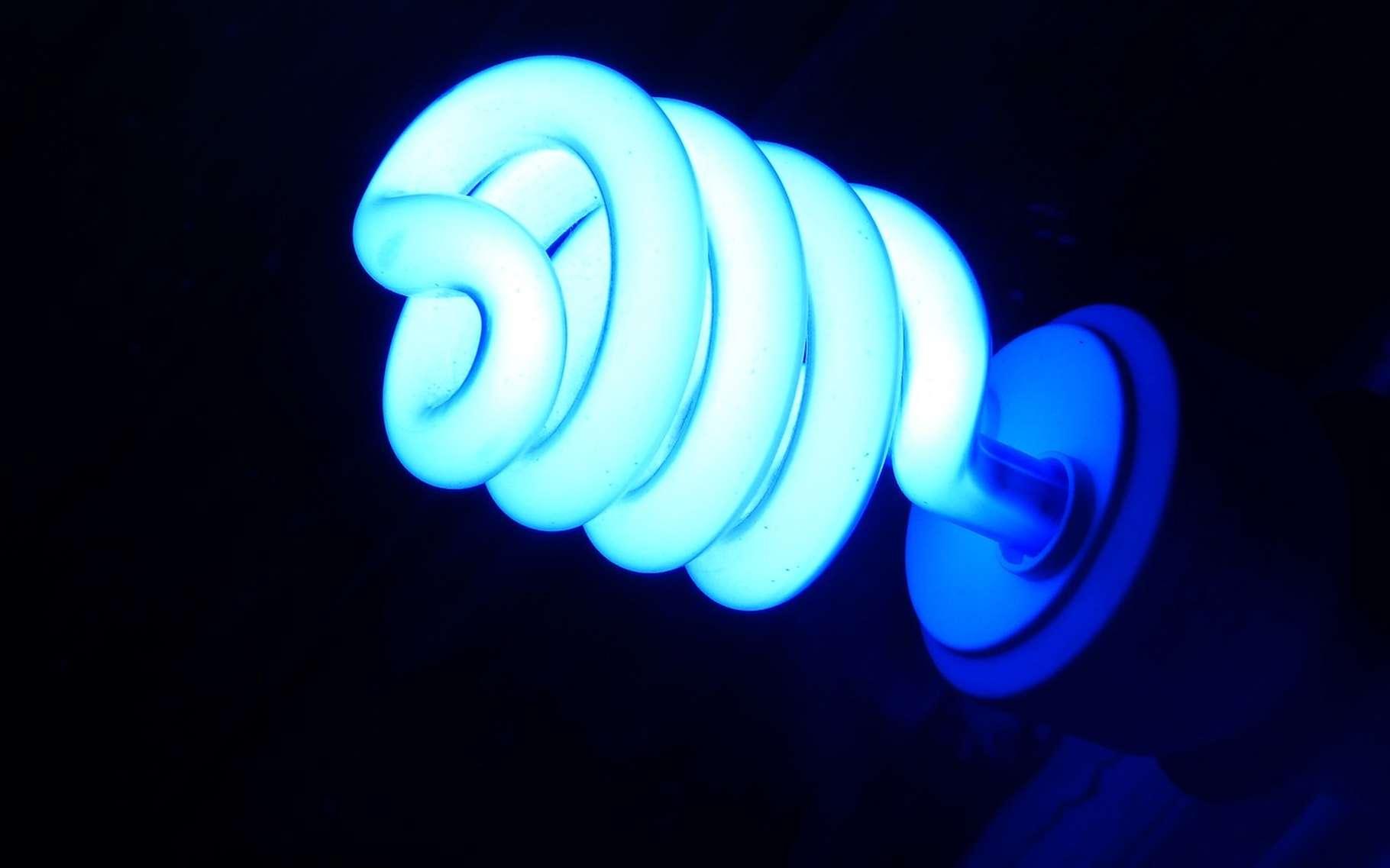 De plus en plus d'appareils électriques dans nos maisons font croître notre consommation. Heureusement, l'efficacité énergétique de ces appareils progresse également. Et les réglementations thermiques de plus en plus strictes nous encouragent à limiter notre consommation d'électricité. ©danielpaz1, Pixabay, CC0 Public Domain