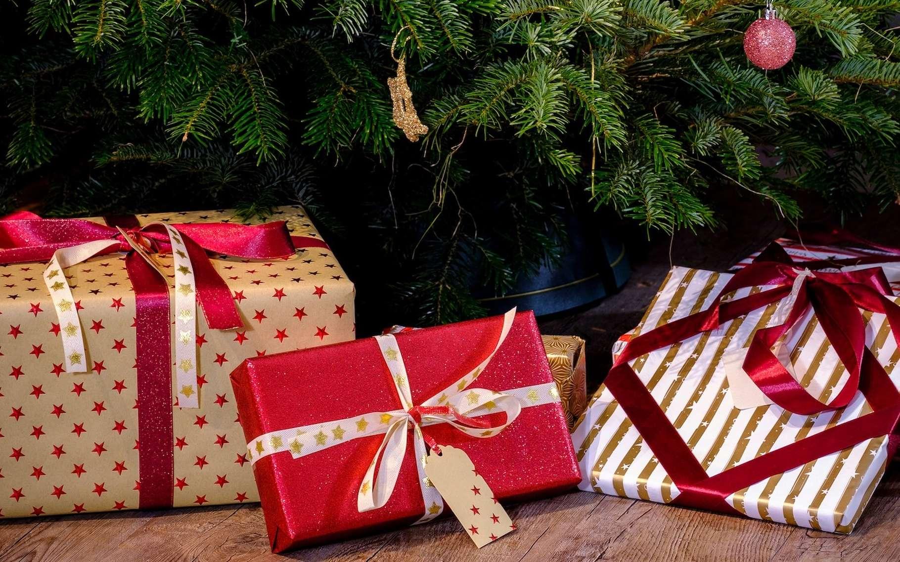 Futura vous recommande quelques livres à poser sous le sapin au prochain Noël. © Bru-nO, Pixabay, CC0 Creative Commons