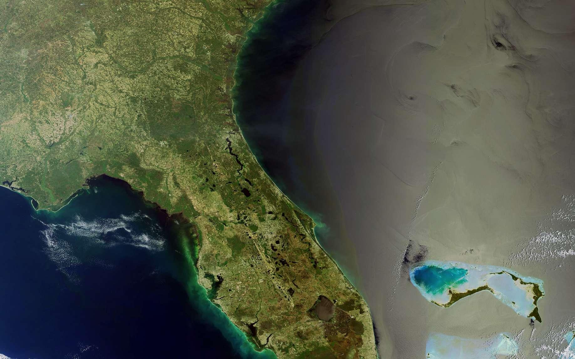 La Floride vue par Envisat. L'archipel des Keys prolonge la côte vers le sud-ouest (le vert émeraude signale les faibles profondeurs). Le golfe du Mexique est à gauche et l'Atlantique à droite, avec, bien visibles, quelques îles des Bahamas. A cet endroit, le courant se dirige vers l'est pour rejoindre le Gulf Stream. © Esa