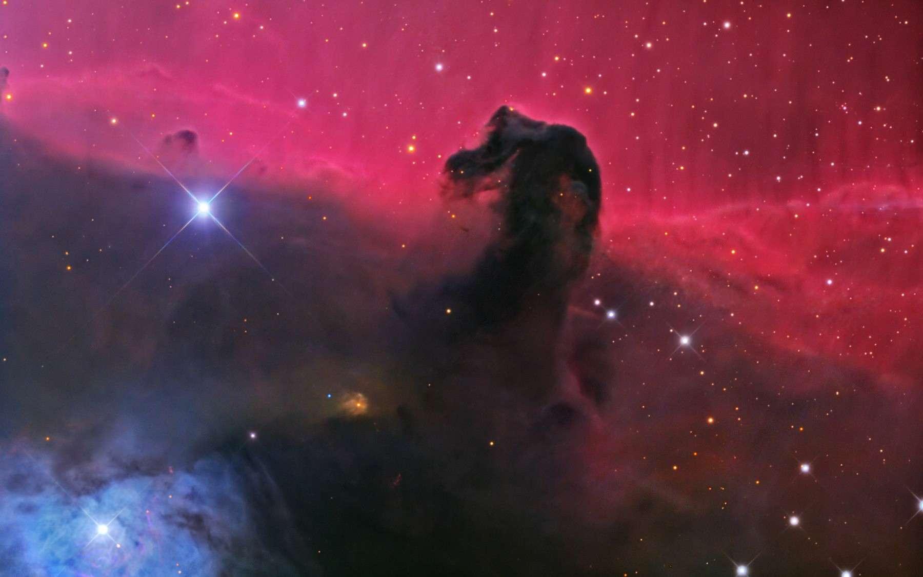 B 33, la magnifique nébuleuse de la Tête de Cheval. © A. Blok/Mt Lemmon SkyCenter