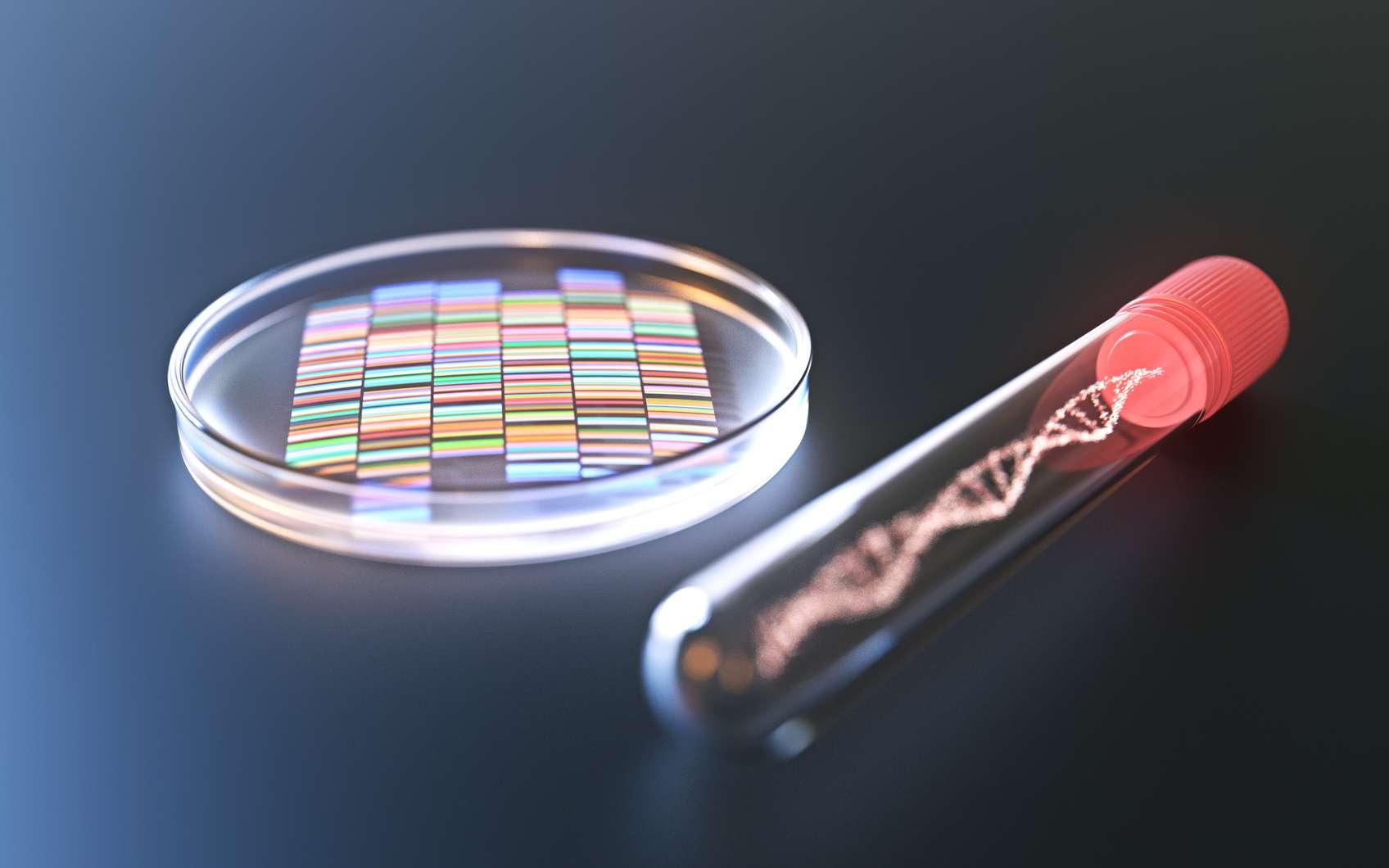 Si la méthode CRISPR offre bien des promesses, elle fait également l'objet de controverses. © Fotolia, Connect world