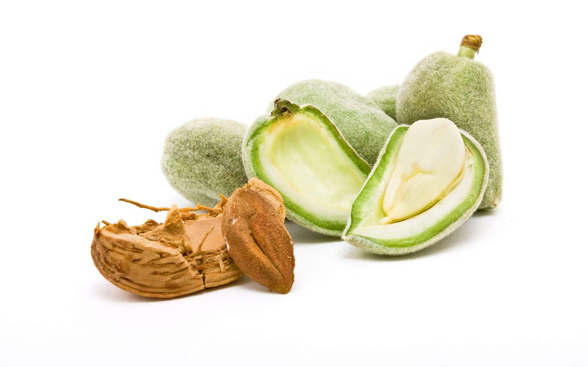 Le benzaldéhyde a une odeur caractéristique d'amande amère. © Crepesoles, Shutterstock