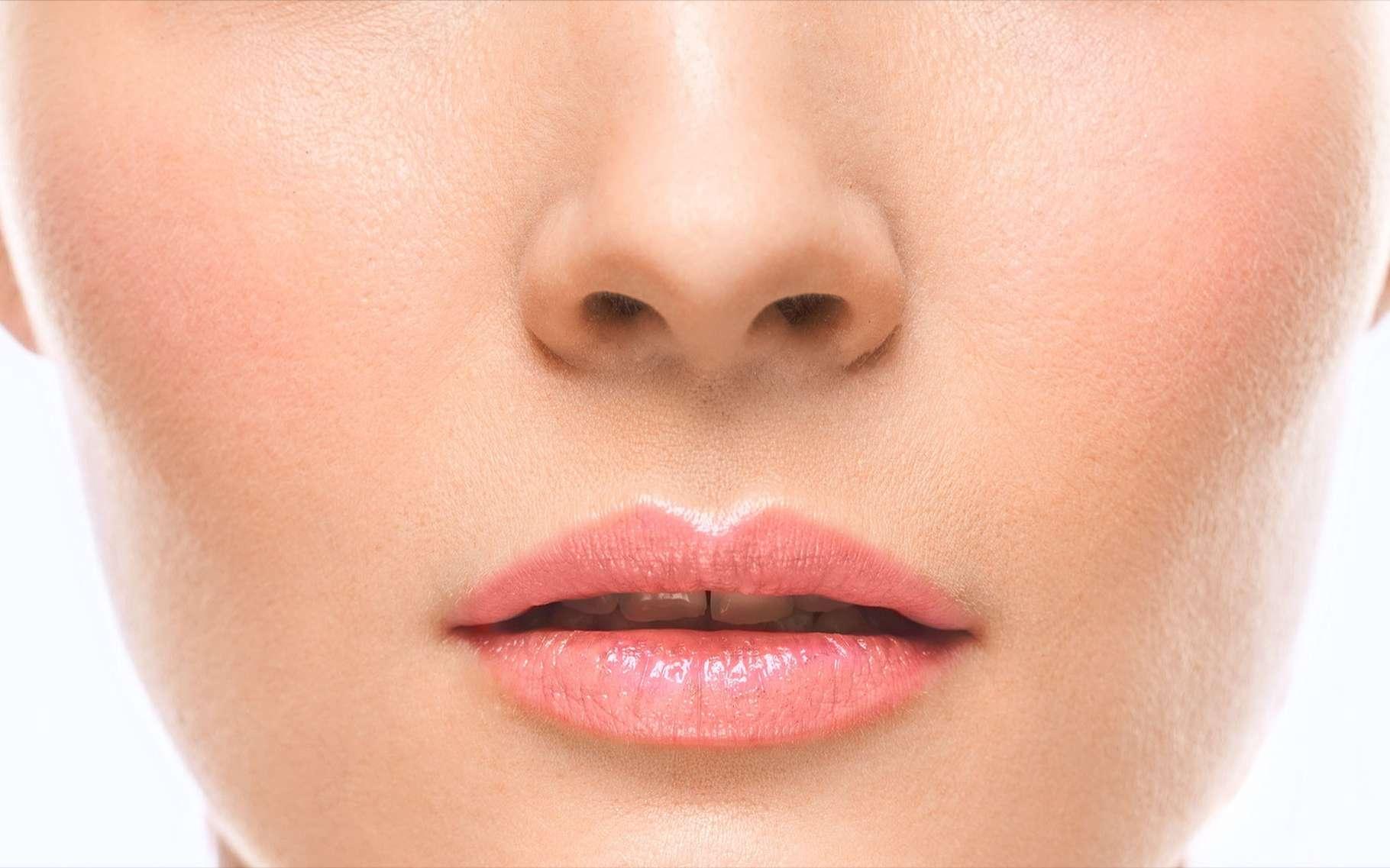 Les cellules du cartilage du nez permettent de fabriquer du cartilage articulaire pour le genou. © Irina Bg, Shutterstock