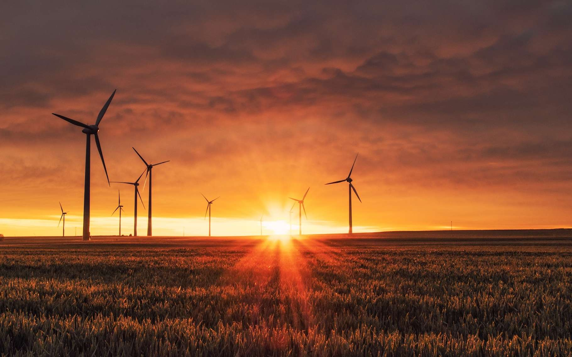Des chercheurs de Harvard ont pu observer des hausses de températures au sol aux abords des fermes éoliennes. Ils ont ensuite projeté ces observations sur un scénario — qui reste fort peu probable — de «tout éolien». © Karsten Würth, Unsplash