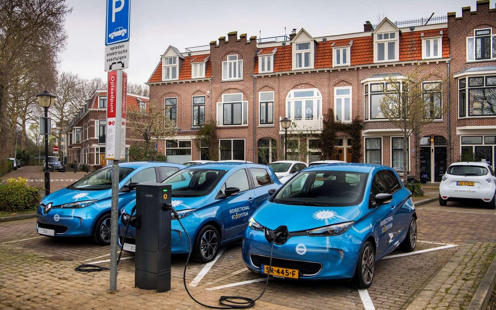 C'est une flotte de Renault Zoe qui participe à ce premier test de charge réversible aux Pays-Bas. © VanDerVaartfotografie