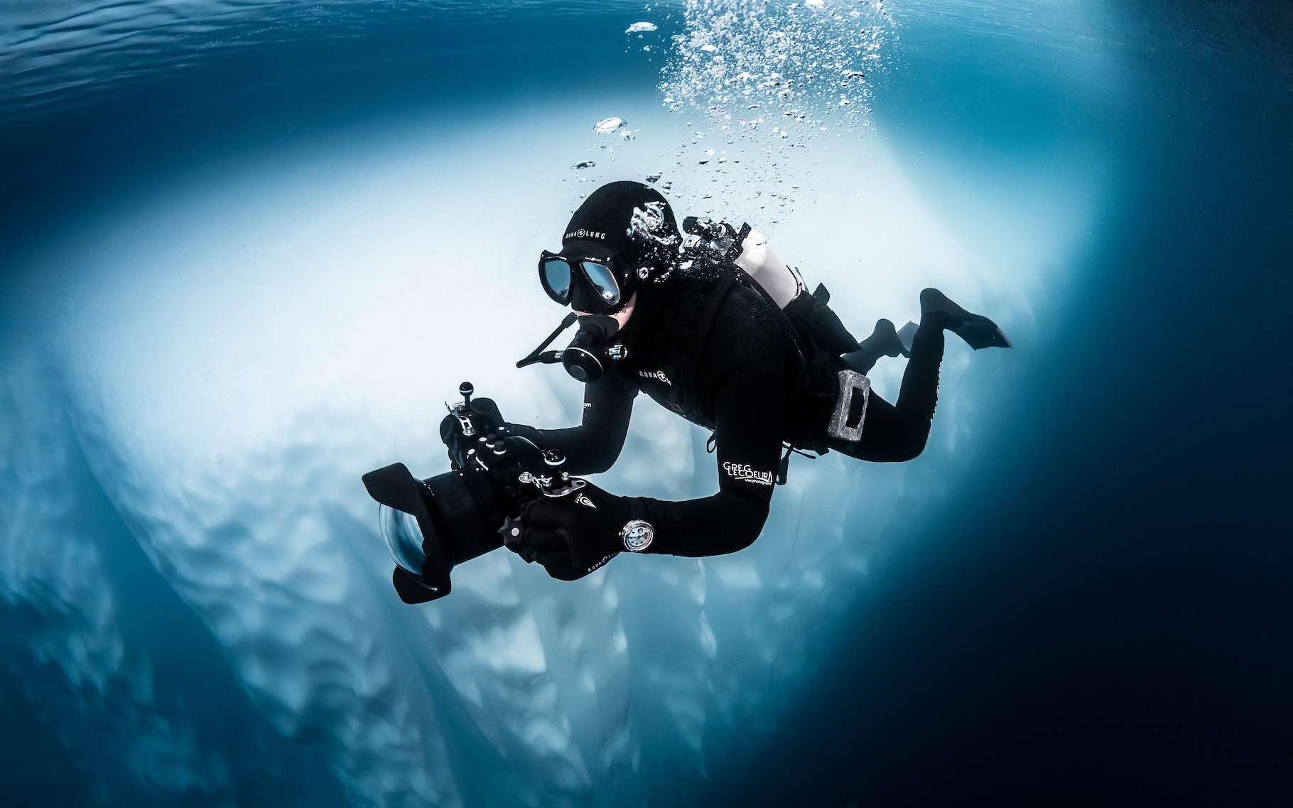 Le photographe Greg Lecoeur a plongé dans les eaux glacées de l'Antarctique pour nous offrir des images rares de cet écosystème hostile et fragile. © Greg Lecoeur, Tous droits réservés
