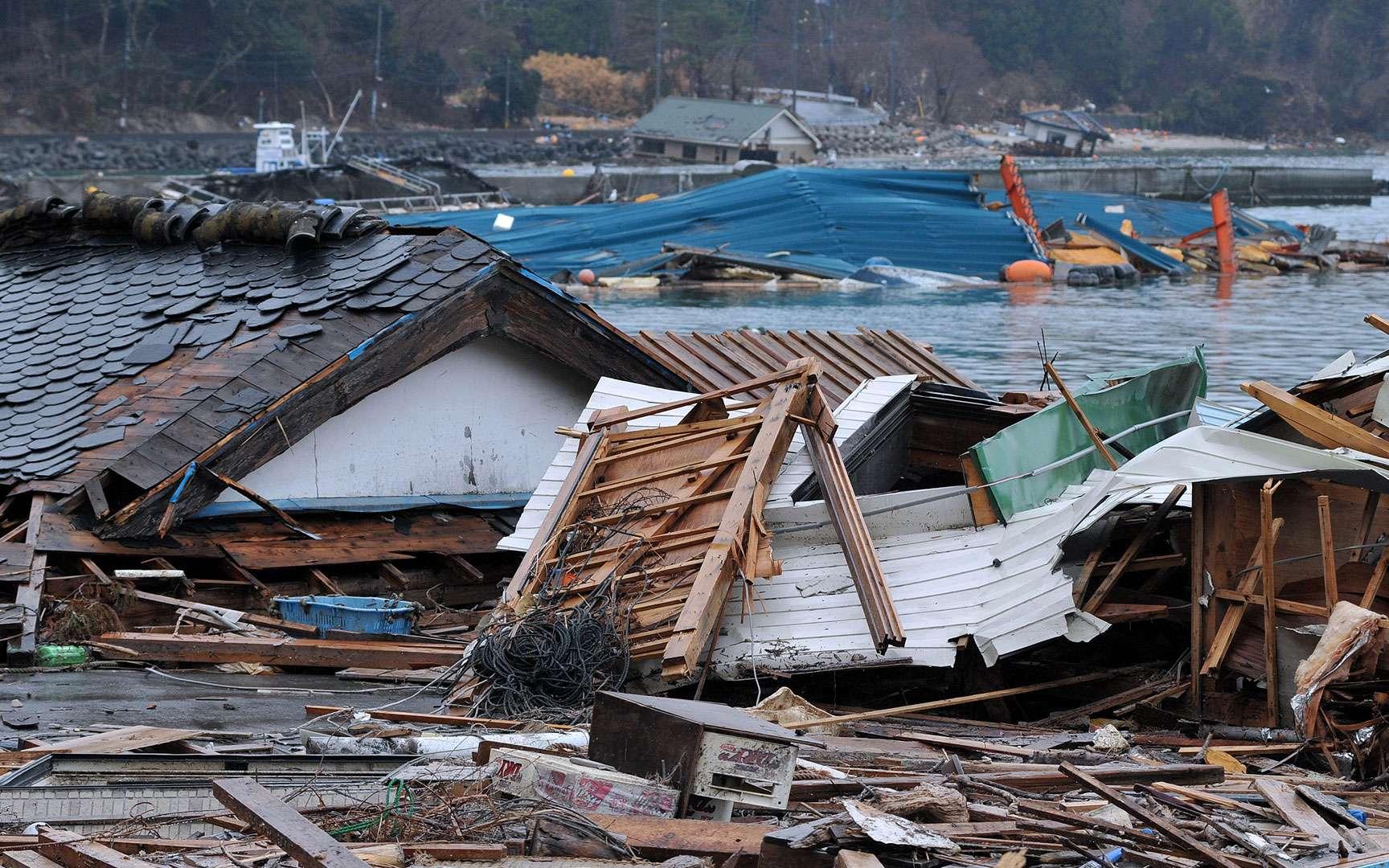 Srilanka - Kalutara : après le Tsunami. Image satellite après le Tsunami (c) DigitalGlobe