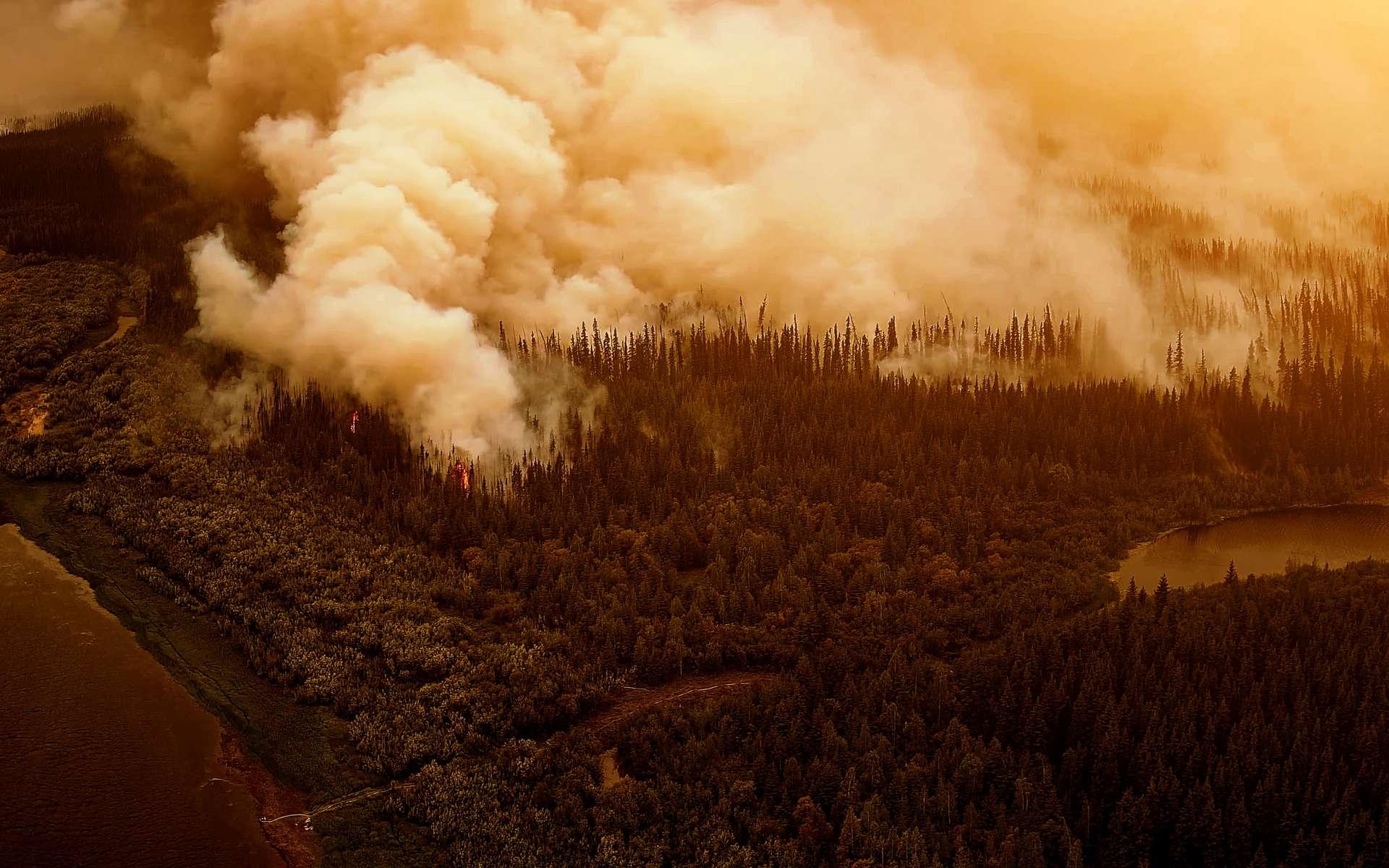 Les incendies sont de retour en Australie. © Marcel Poncu, Adobe Stock