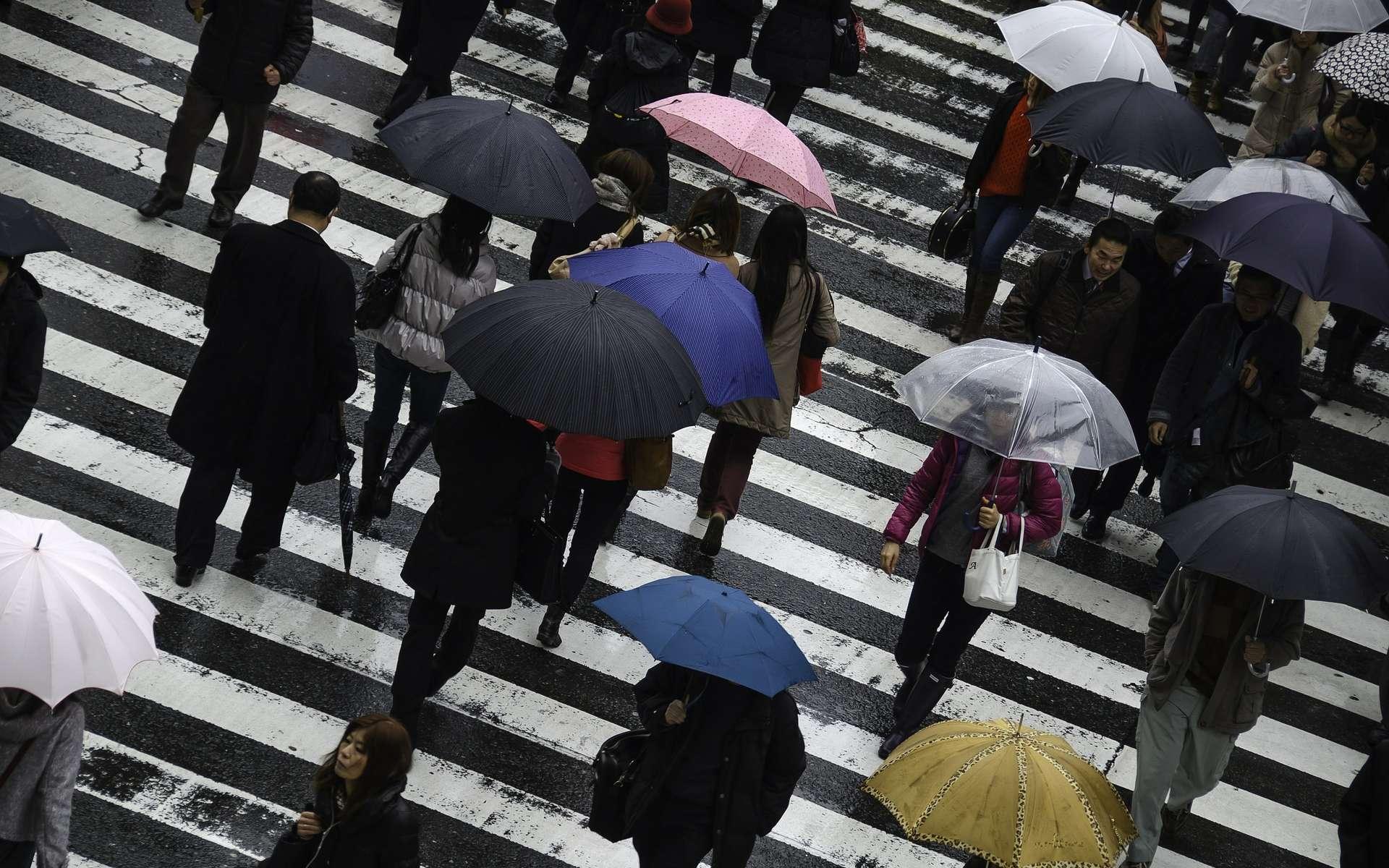 Les villes françaises avec les plus fortes précipitations annuelles. © B_Me, Pixabay
