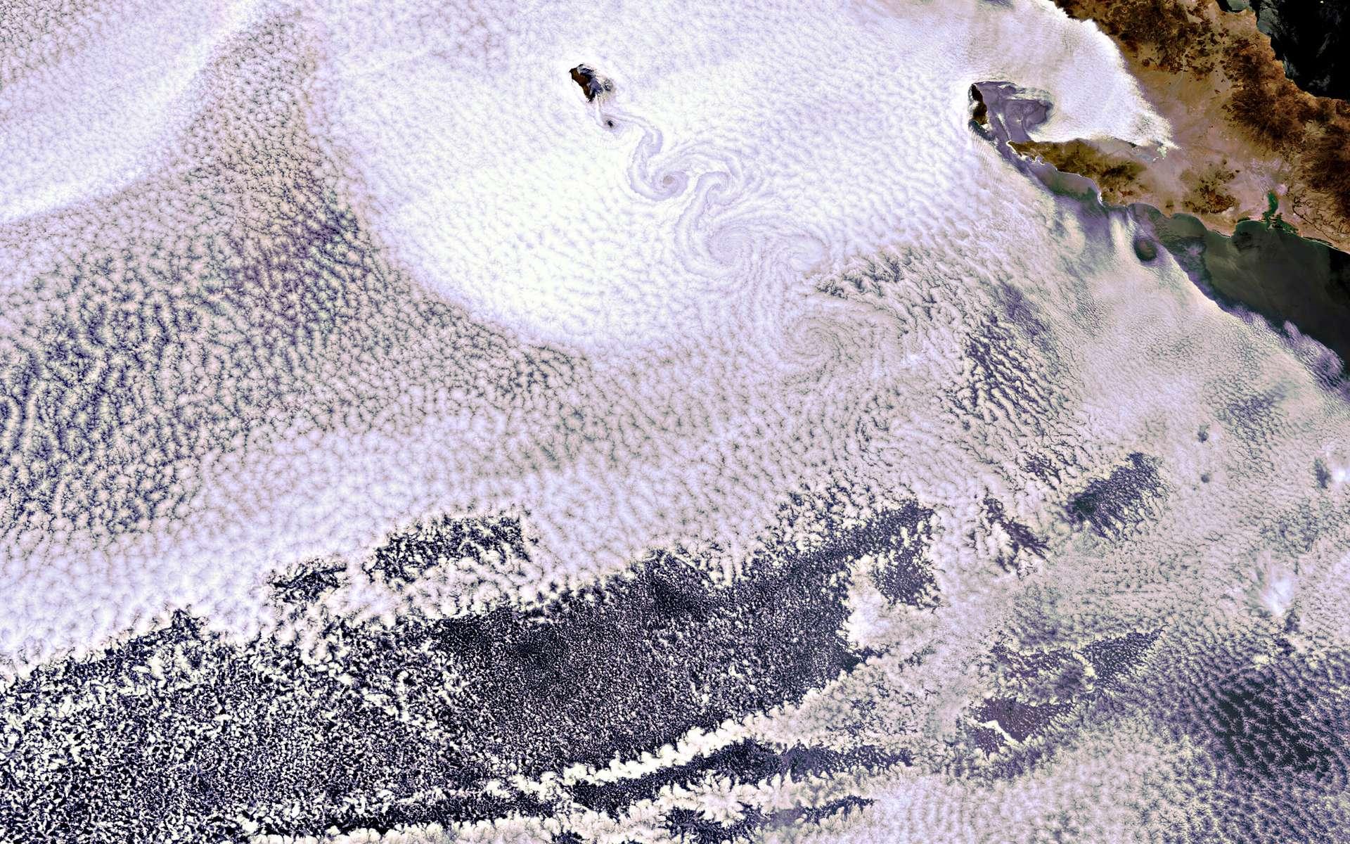 La petite île volcanique de Guadalupe émerge d'une mer de nuages. © Esa
