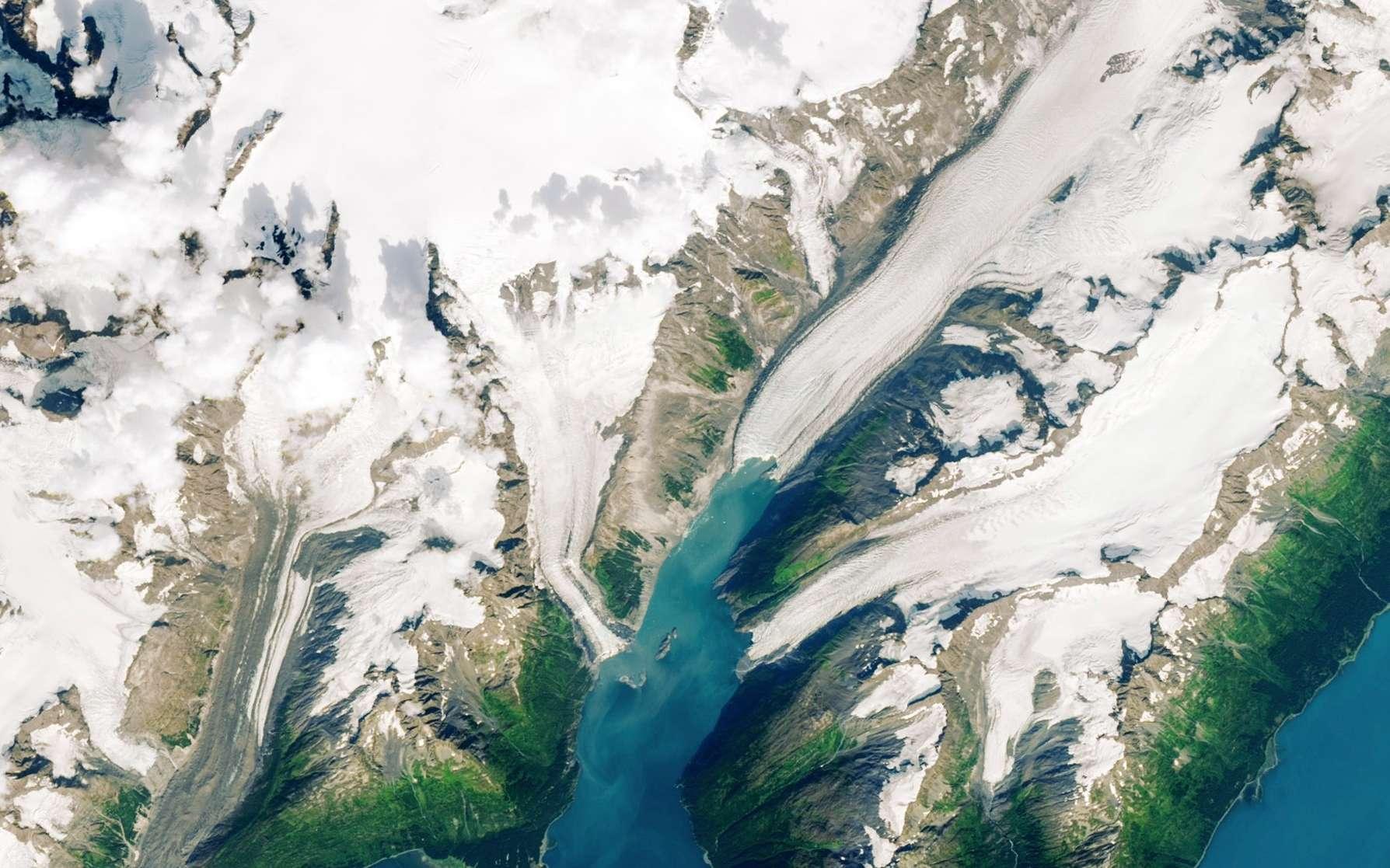 Le fjord de Barry Arm en août 2019. La montagne qui menace de s'écrouler est au centre de l'image satellite. © Nasa