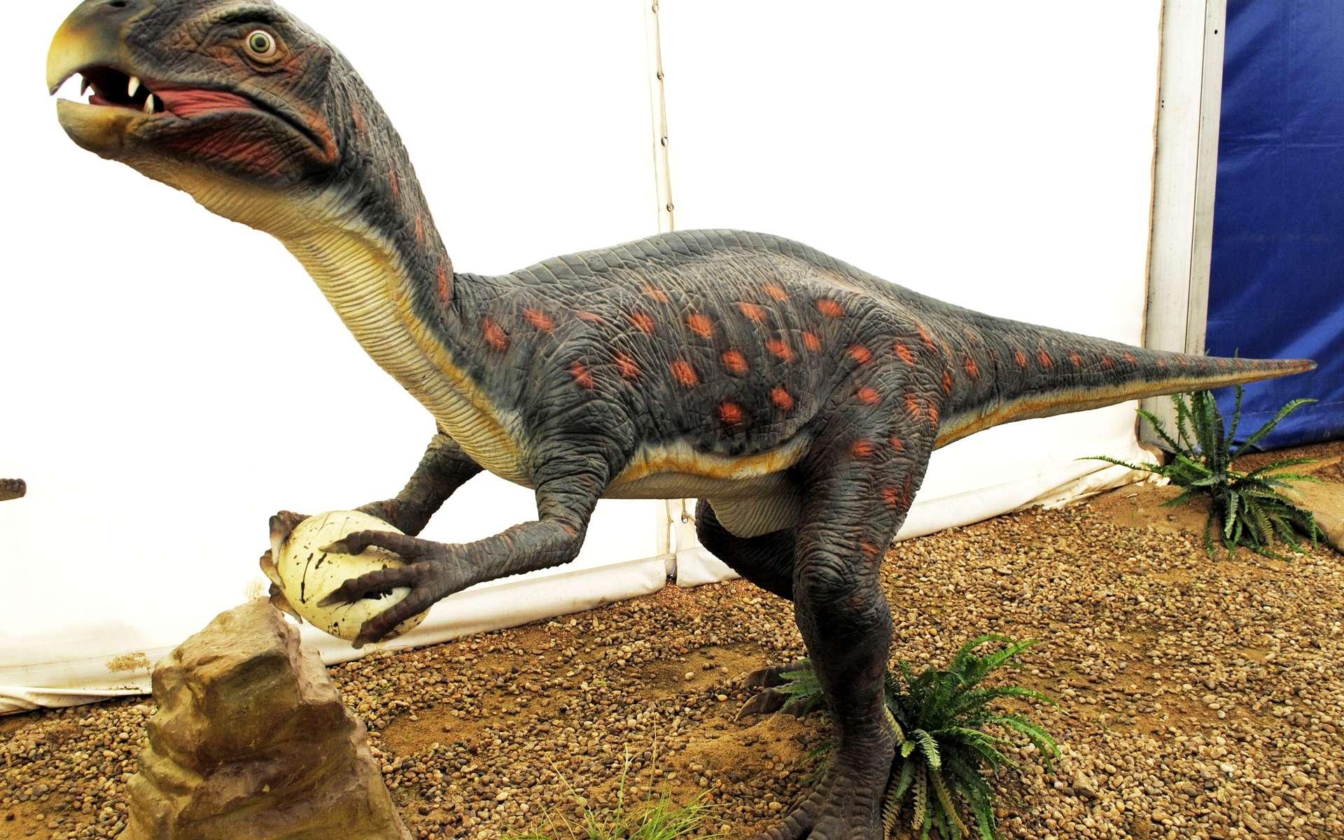 L'équipe a travaillé sur deux espèces très différentes dont un oviraptoridé. Dans cette famille de dinosaures, on avait une bouche édentée, des os creux, des jambes puissantes et trois longs doigts crochus. Proches des oiseaux, ces animaux devaient être très actifs. © HombreDHojalata
