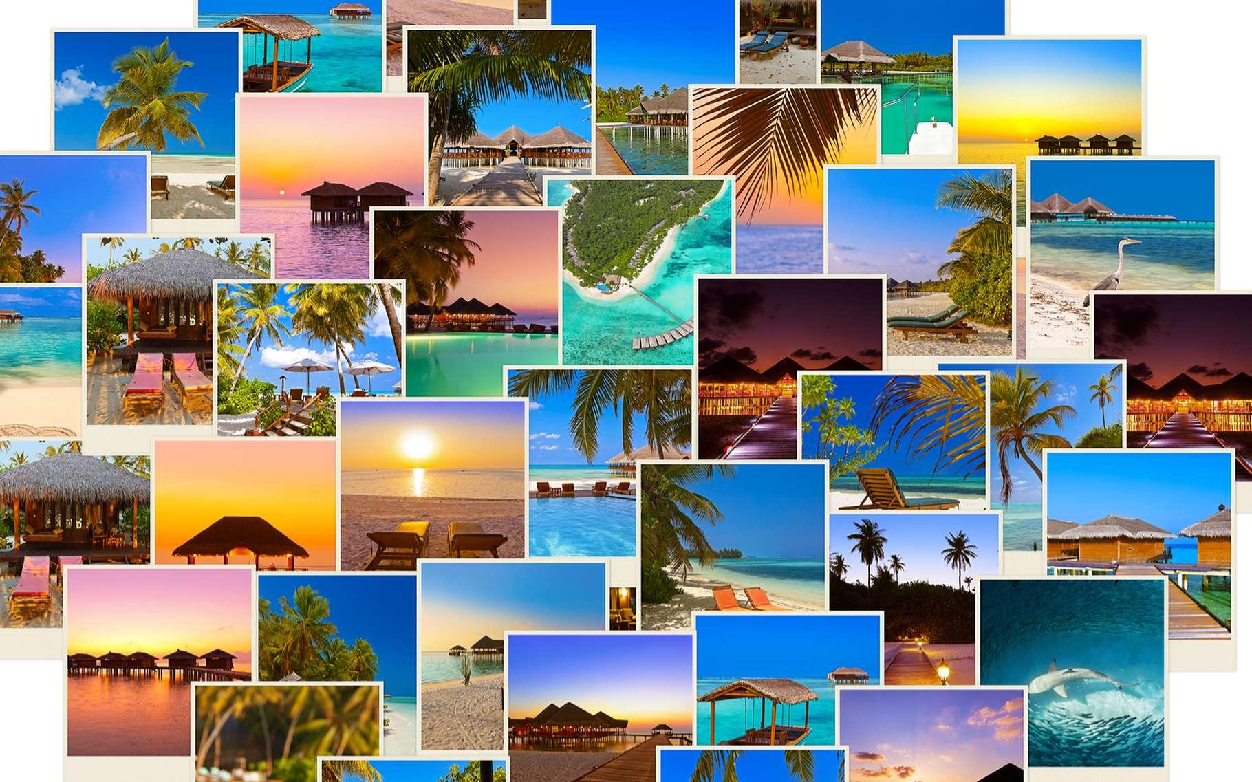 Google permet d'effectuer une recherche à partir d'une image trouvée sur Internet ou enregistrée sur son ordinateur. © , Shutterstock