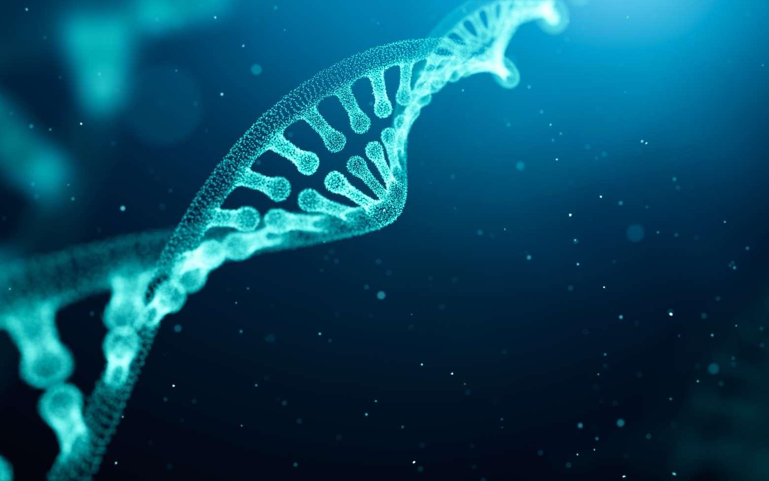Les Pandoravirus semblent capables de générer de nouveaux gènes. © phive2015, Fotolia