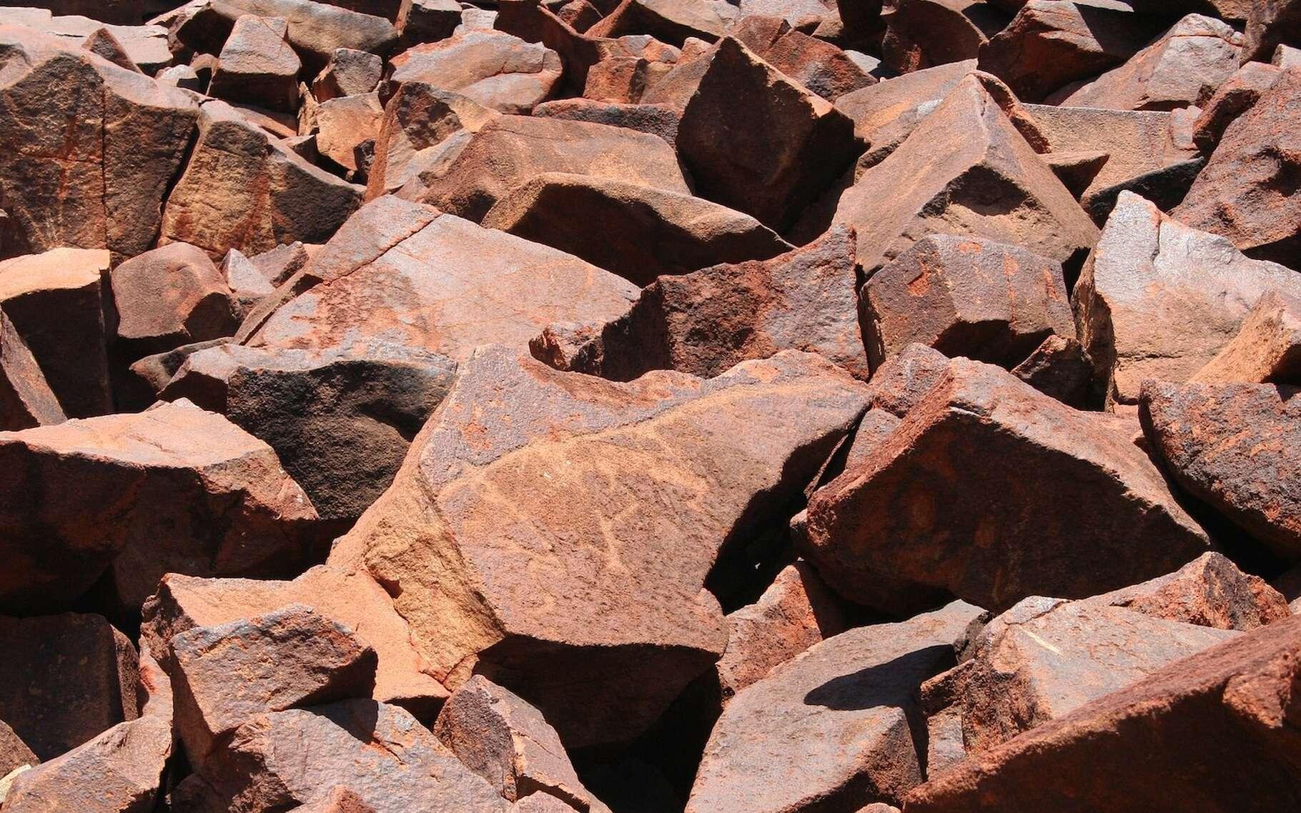À l'ouest de l'Australie, des chercheurs ont découvert des stromatolites vieux de 3,5 milliards d'années dans les années 1980. Aujourd'hui, ils confirment enfin qu'ils contiennent des restes microbiens, parmi les plus anciennes traces de vie sur Terre. © MrBlack, Pixabay License