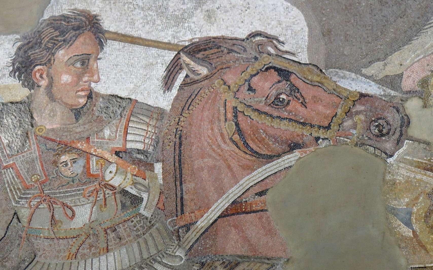 Selon des chercheurs, Alexandre le Grand aurait été atteint d'un syndrome de Guillain-Barré et victime d'un faux diagnostic de décès. © gianmarchetti, fotolia