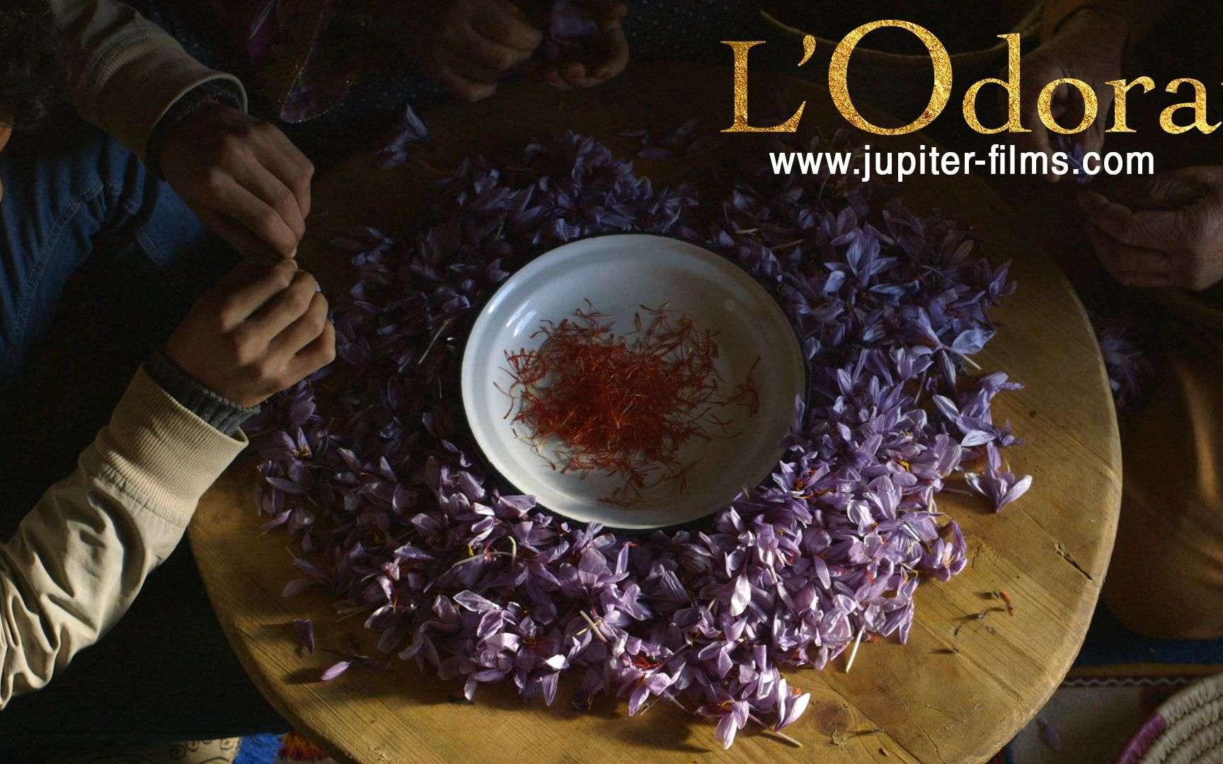 Le film Odorat sera projeté en ligne le 24 février à 19h30. © Jupiter Films