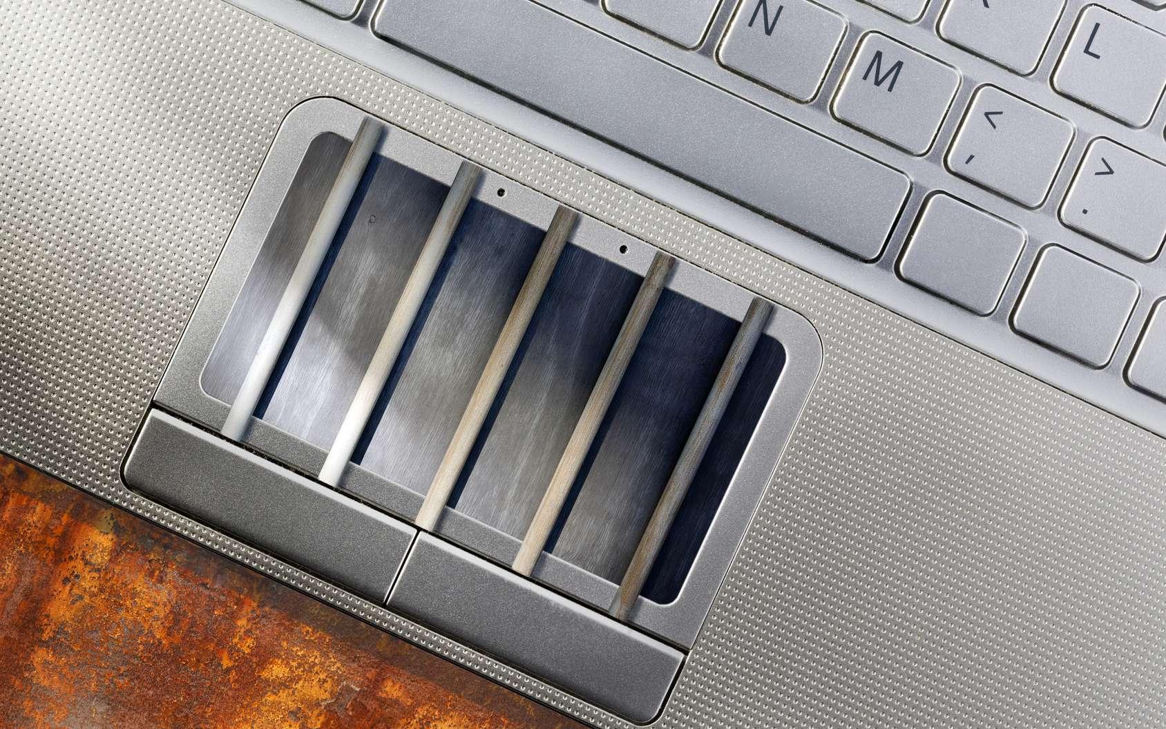 Morpheus, l'ordinateur impossible à pirater, est-il vraiment infaillible ? L'implantation de systèmes de sécurité au niveau matériel serait une solution pour protéger les ordinateurs. © Peter de Kievith, Fotolia
