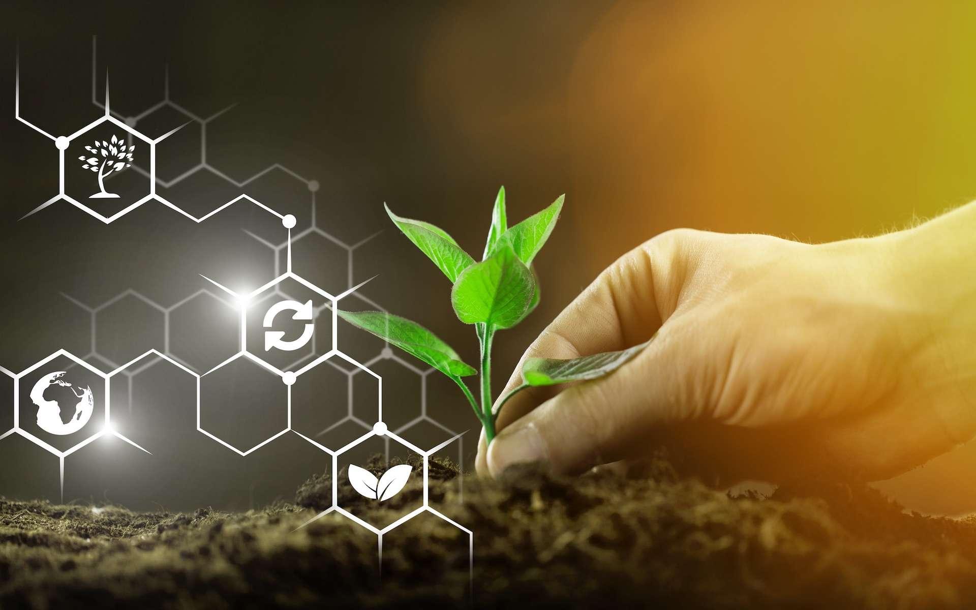 Environnement, santé, réduction de la pollution…, les avantages des OGM. © BillionPhotos.com, Adobe Stock