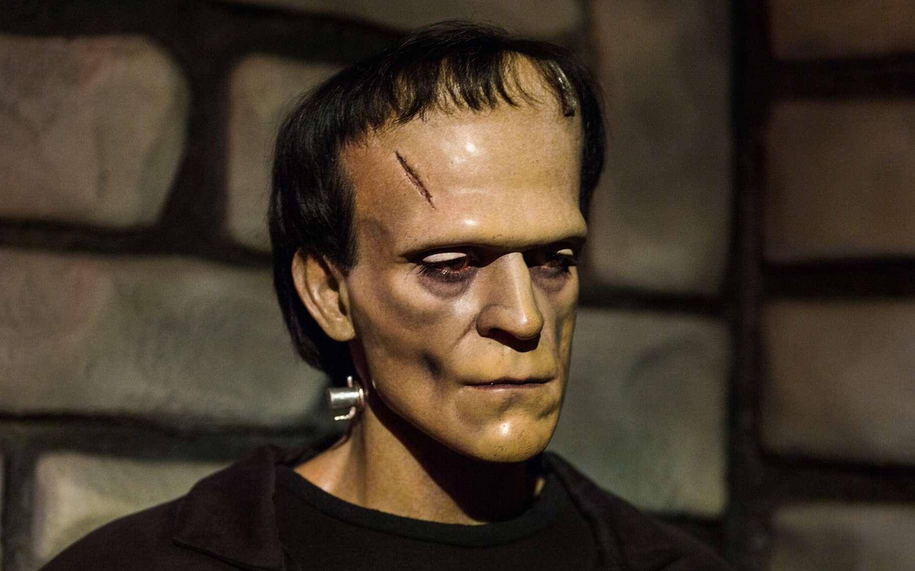 Le personnage de Frankenstein a été imaginé par Mary Shelley en 1818. Ici, la réplique de cire de Frankenstein présentée dans le musée Madame Tussauds de New York. Selon une étude de chercheurs américains, sans la clairvoyance de son créateur, le docteur Frankenstein, la créature aurait pu provoquer l'extinction de l'humanité. © Anton_Ivanov, Shutterstock