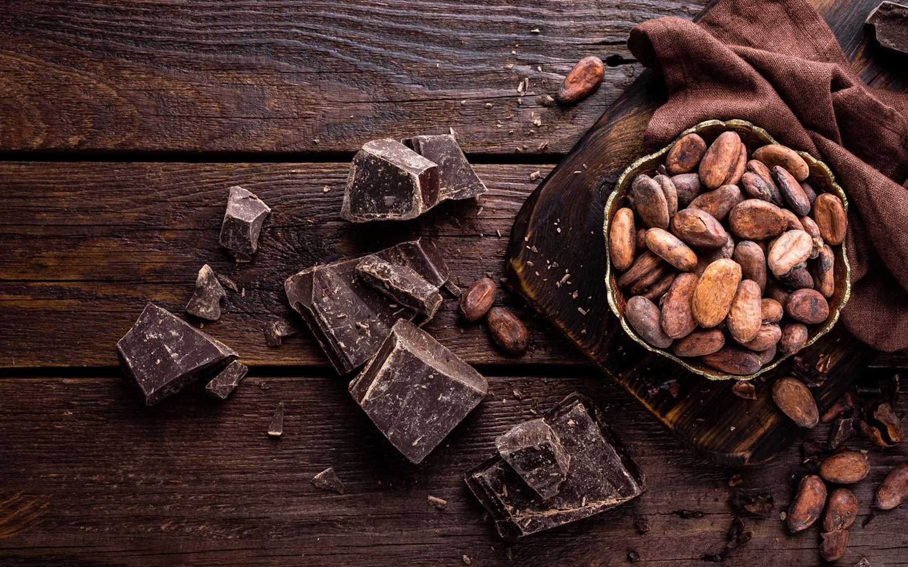 Le cacao est riche en flavanols, un composé organique cyclique qui fait du bien au cerveau. © Sea Wave, Fotolia