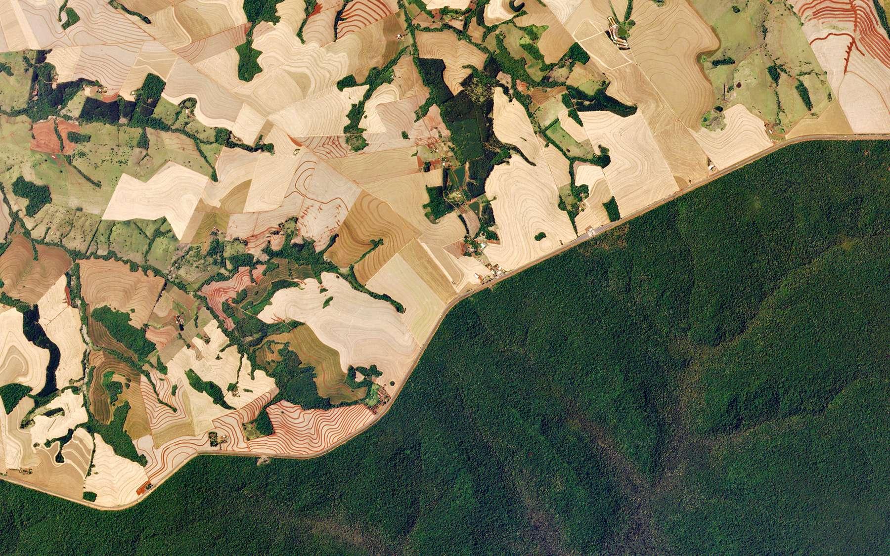La route 277 traverse l'État de Paraná, dans le sud du Brésil, divisant la forêt luxuriante du parc national d'Iguazú en une mosaïque de fermes de canne à sucre labourées. © 2018 Planet Labs, Inc.