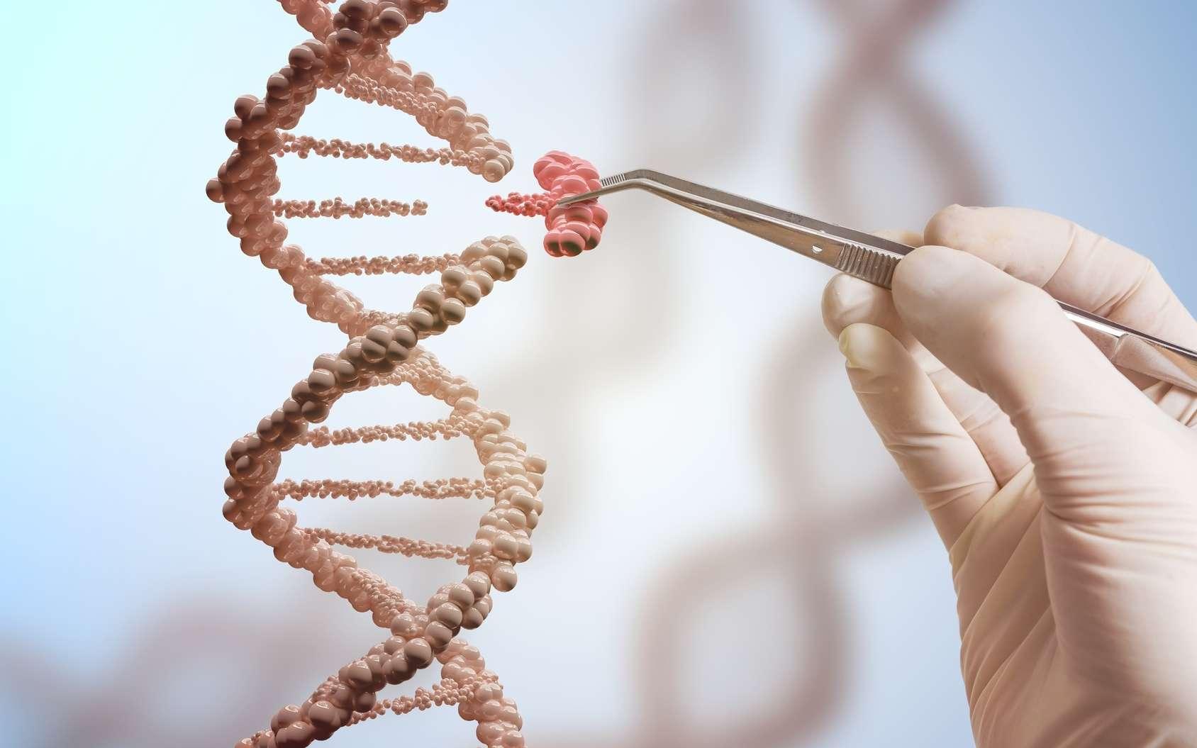 L'édition du génome, ou édition génomique, permet de modifier le génome des êtres vivants. © vchalup, Fotolia