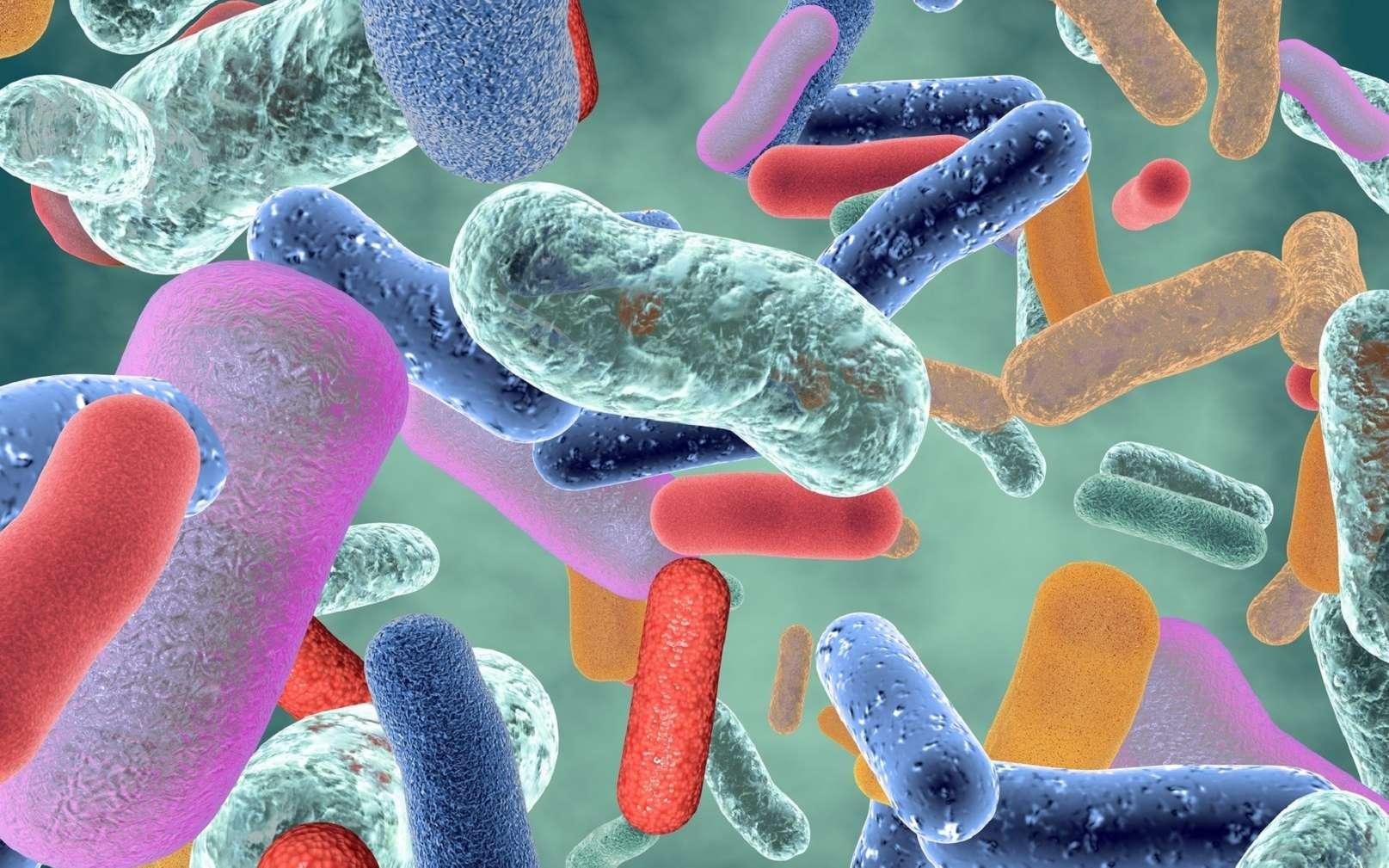 Le microbiote est composé d'une diversité de micro-organismes. © picture-waterfall, Fotolia