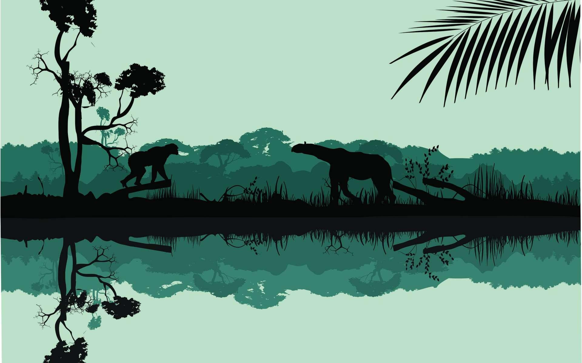 La vie a connu une diversification très rapide après l'extinction du Crétacé-Tertiaire. © Massaget, Adobe Stock