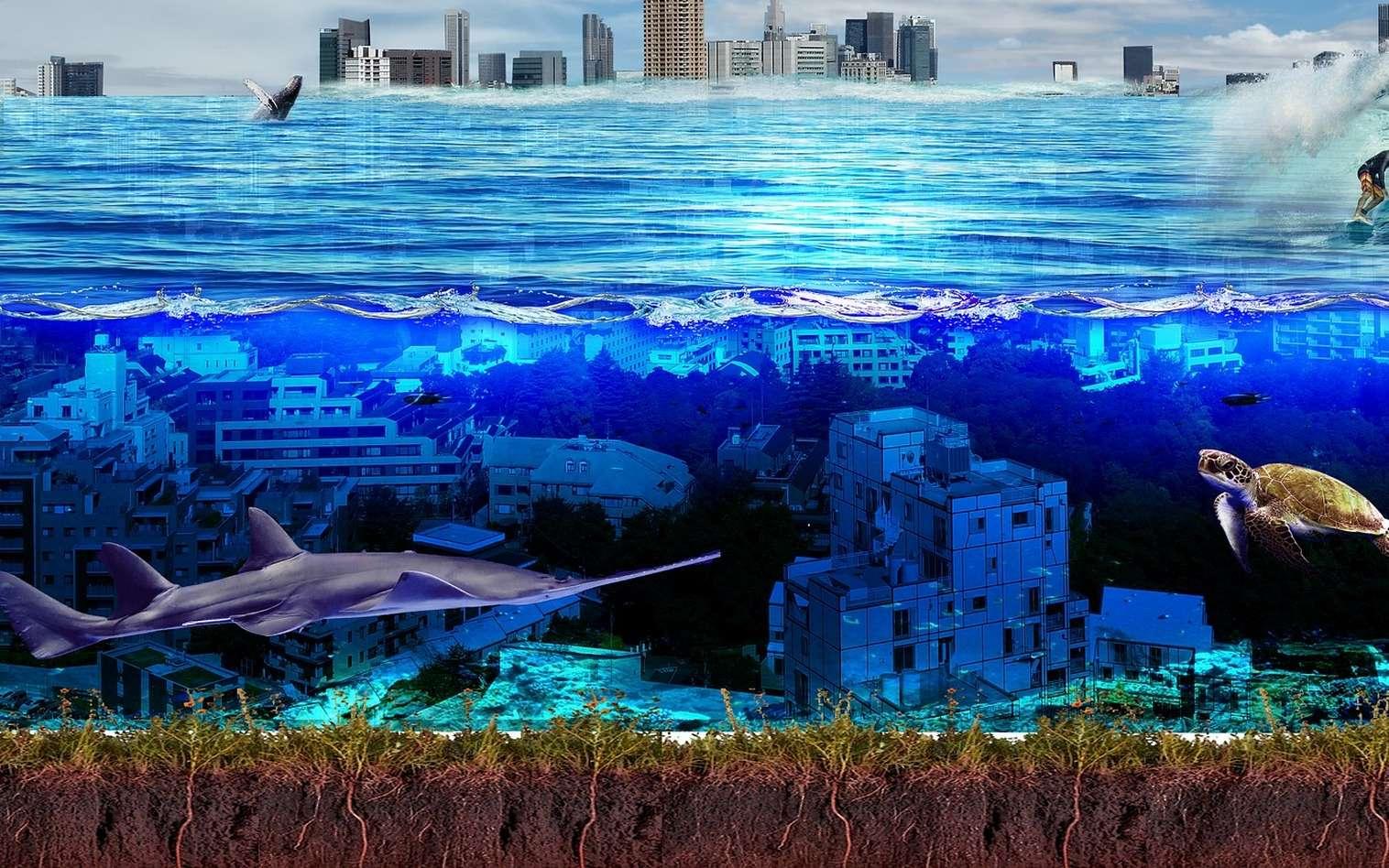 La Chine veut être le premier pays à posséder une base sous-marine robotisée. © CC0 Creative Commons