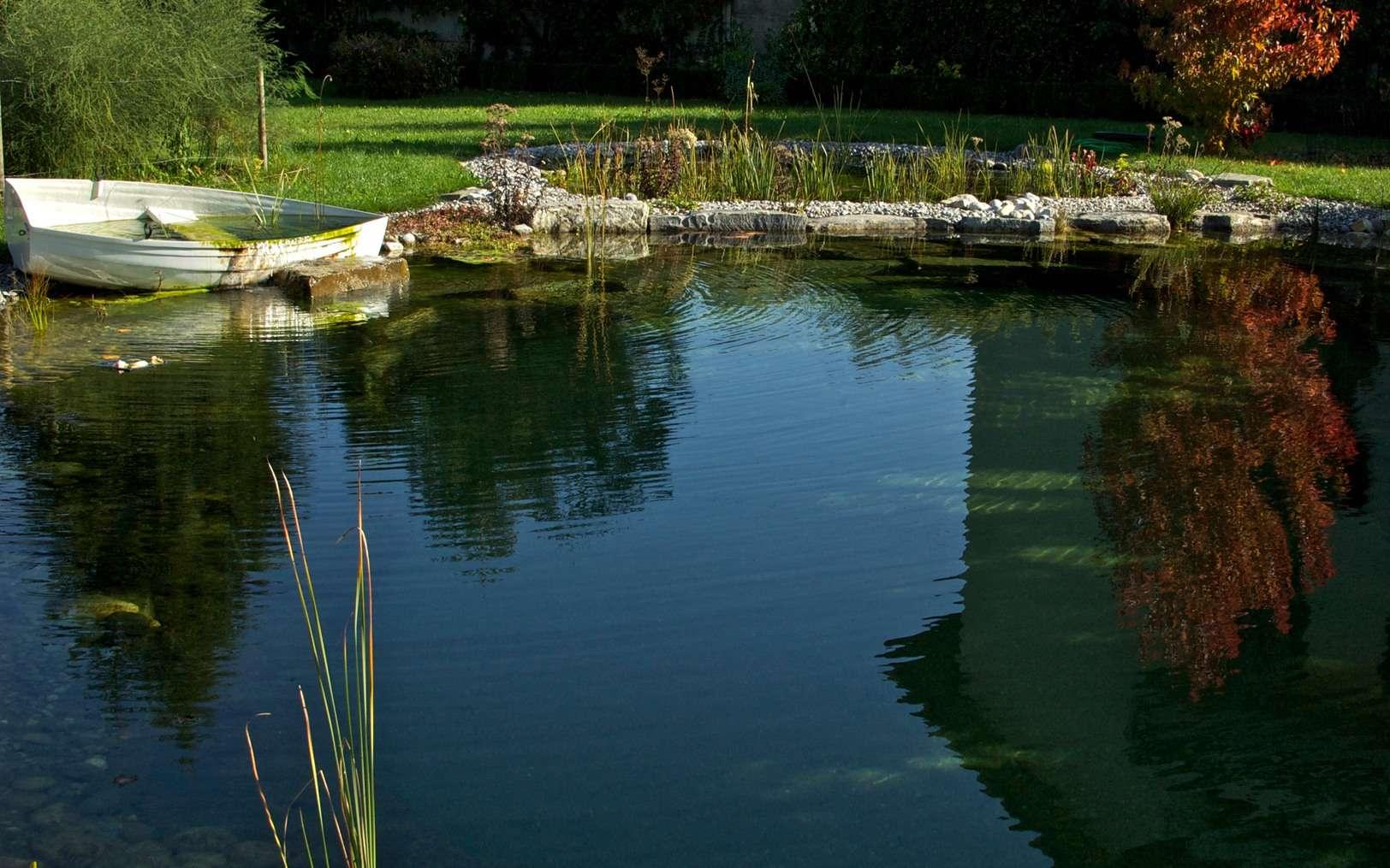 Construire une piscine naturelle permet de mieux l'intégrer dans son environnement. © Les Jardiniers du Possible, Fotopedia, CC BY-NC 3.0
