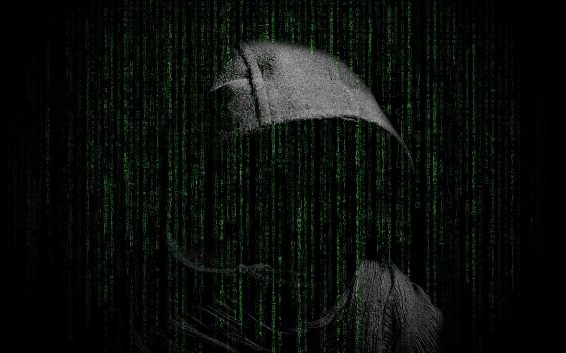 La Russie, la Chine et la Corée du Nord sont régulièrement accusées d'être derrière d'importantes cyberattaques. © Darwin Laganzon, Pixabay