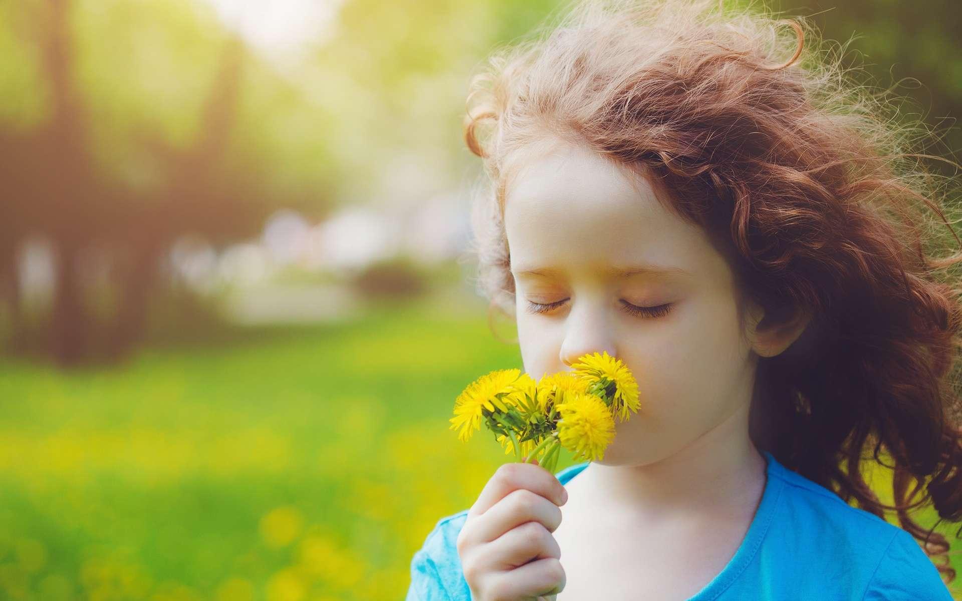 Des allergènes, comme les pollens, peuvent favoriser la crise d'asthme. © Yuliya Evstratenko, Shutterstock