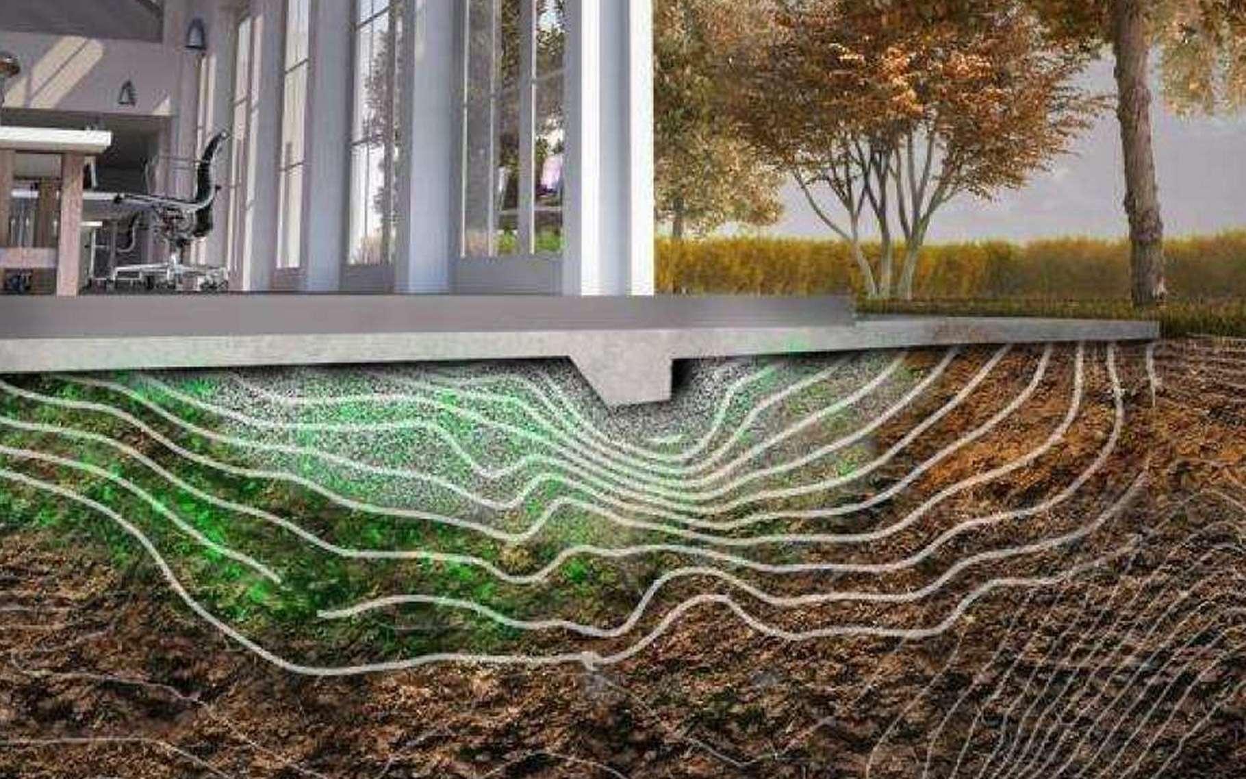 Domestiquées, des bactéries pourraient former dans le sol des matrices de polymères ou de calcite qui constitueraient de belles fondations pour un bâtiment à construire. © Carolina Ramirez-Figueroa, Luis Henan
