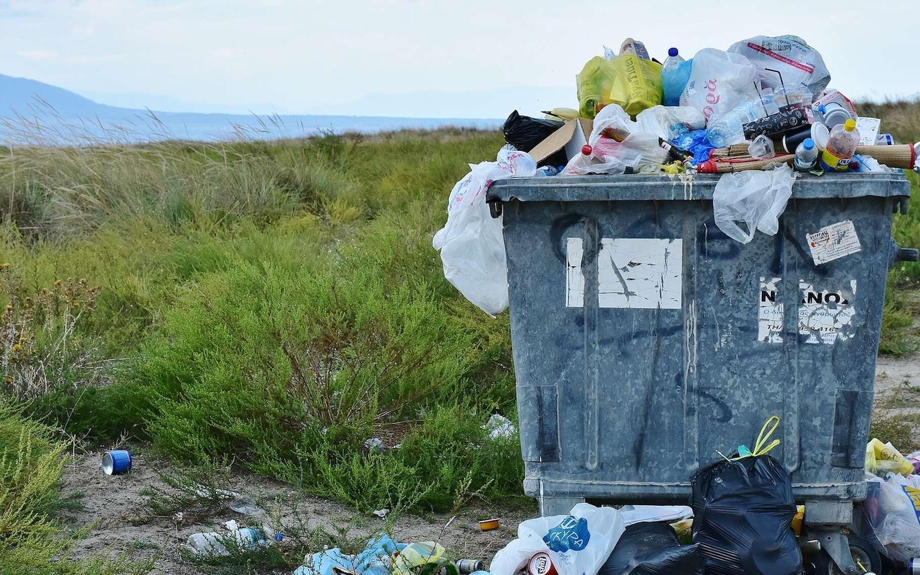 Un déchet est qualifié d'ultime lorsqu'il n'est ni valorisable ni recyclable. © RitaE, Pixabay, CC0 Creative Commons