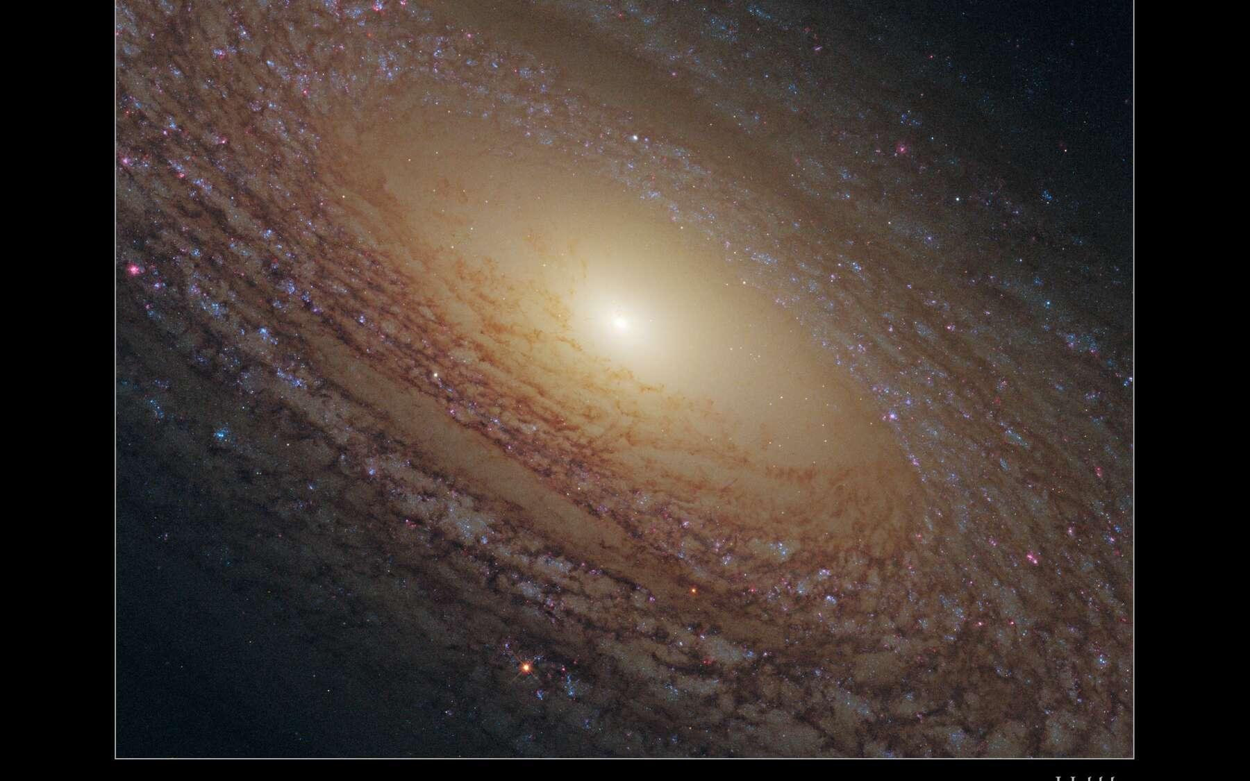 NGC 2841, une galaxie pauvre en pouponnières d'étoiles. © Nasa, Esa, the Hubble Heritage (STScI/AURA)-Esa/Hubble Collaboration